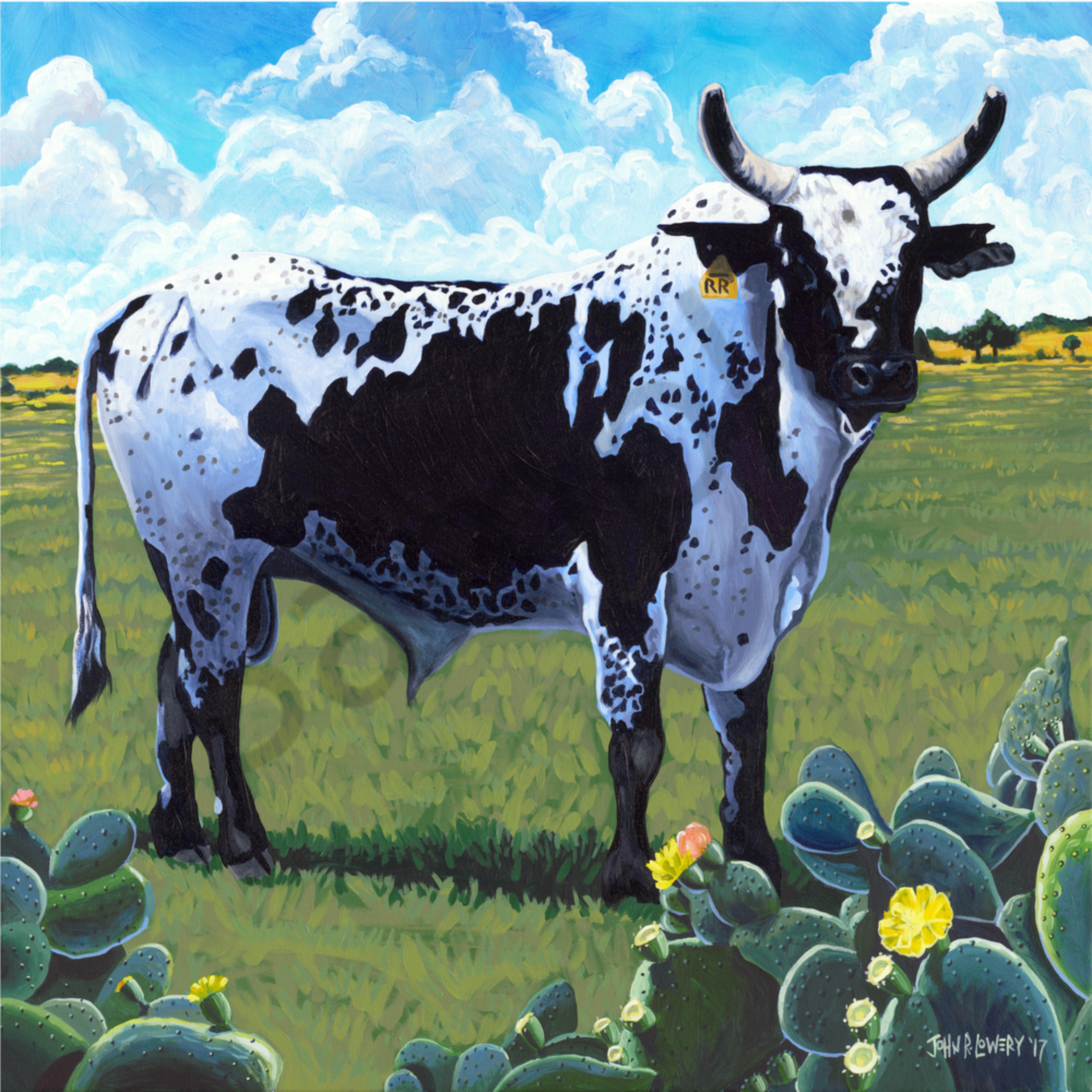 Asf   rodeo bull buhffn