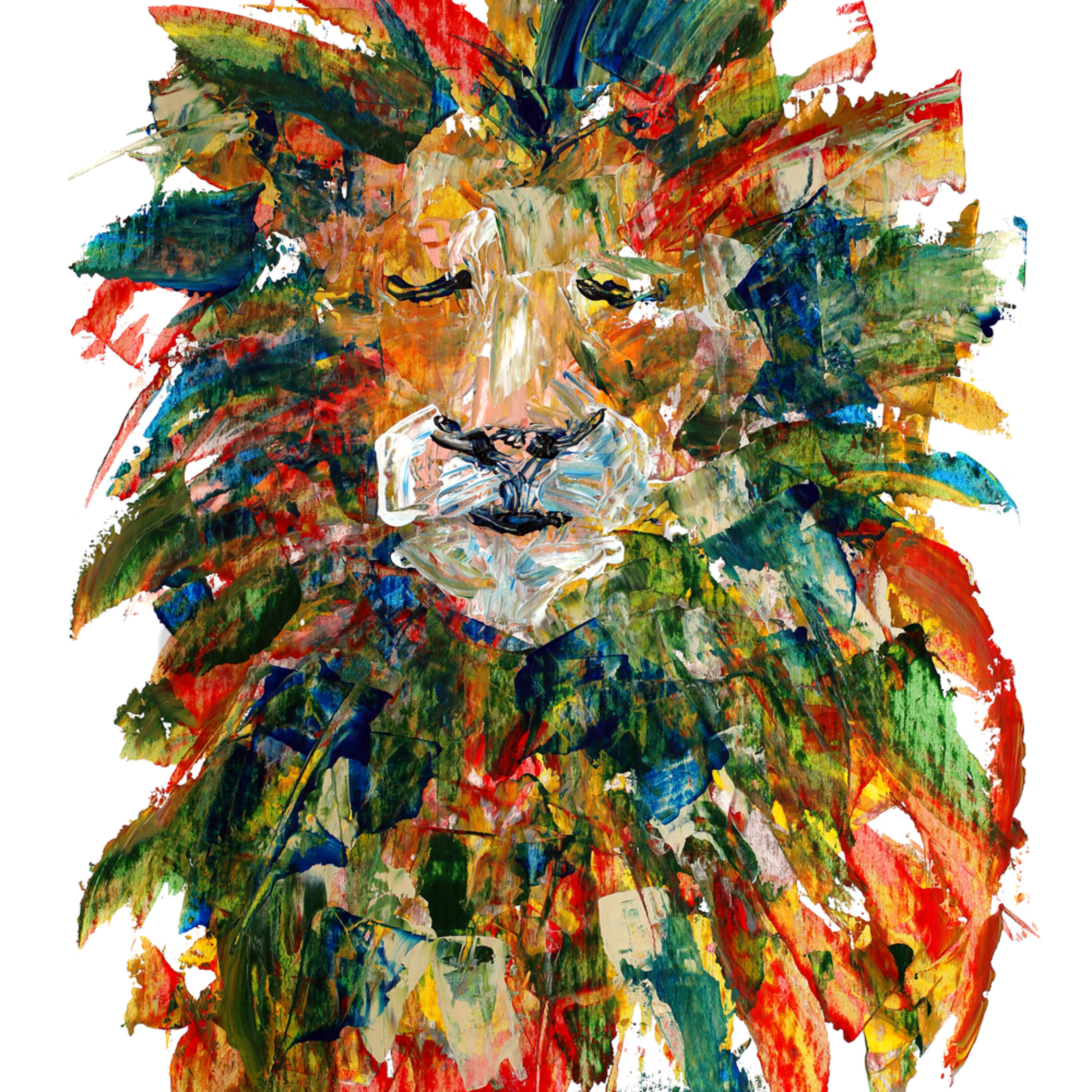 Lion1 meghknappenberger cxfjdv
