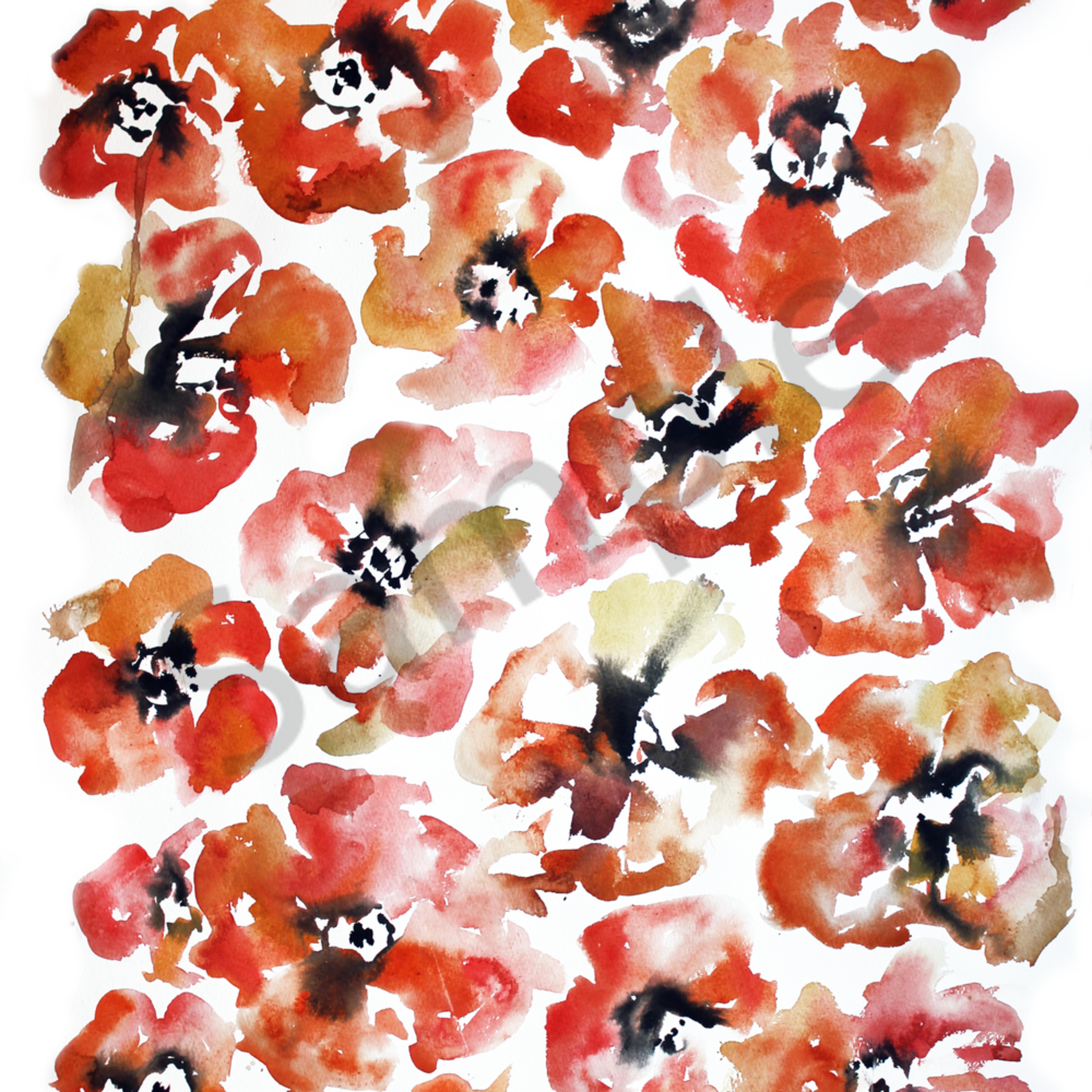 Poppies print nju4hi