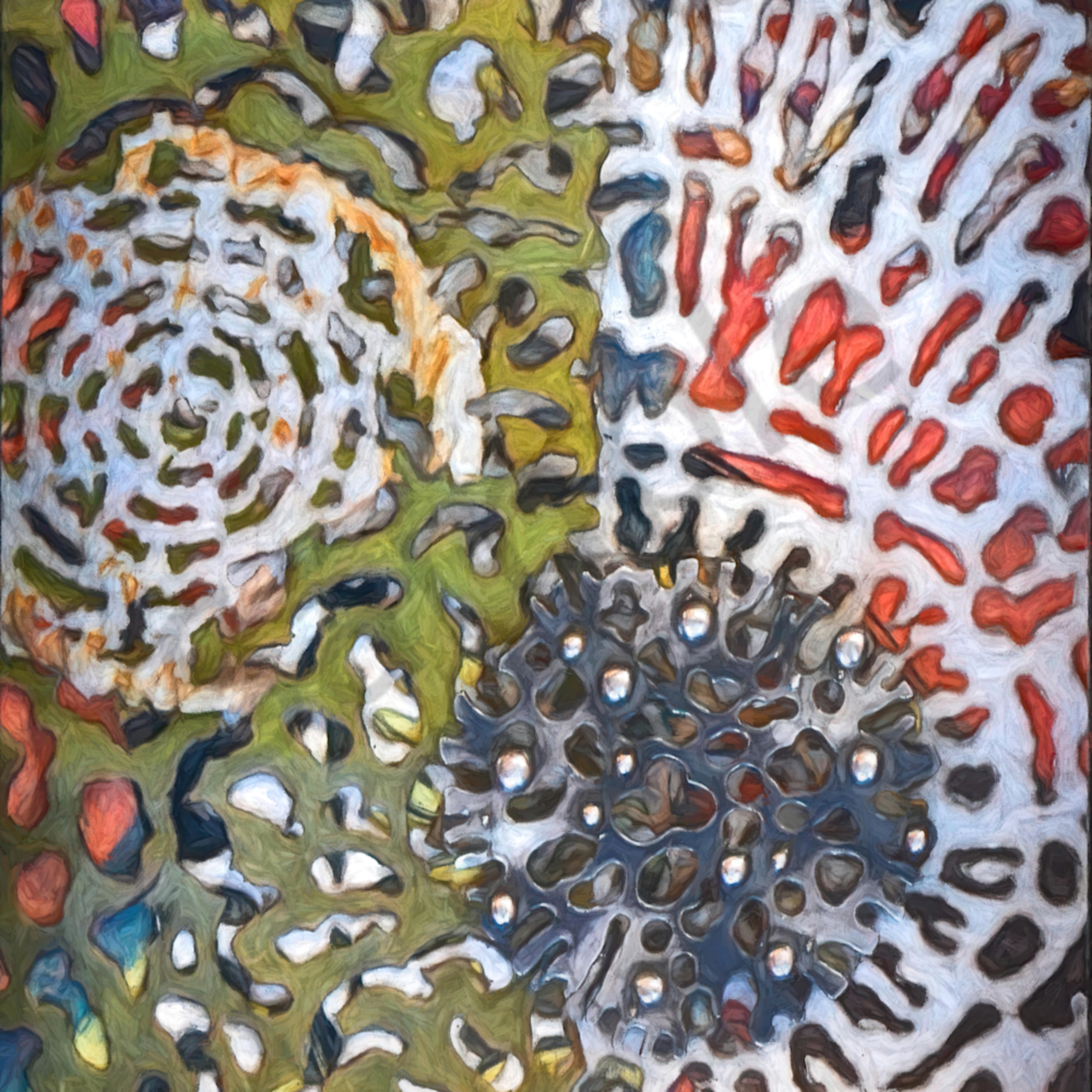 Inna dzhanibekova collage radiolaria 1 abstract prinst website gp02 z8mmja