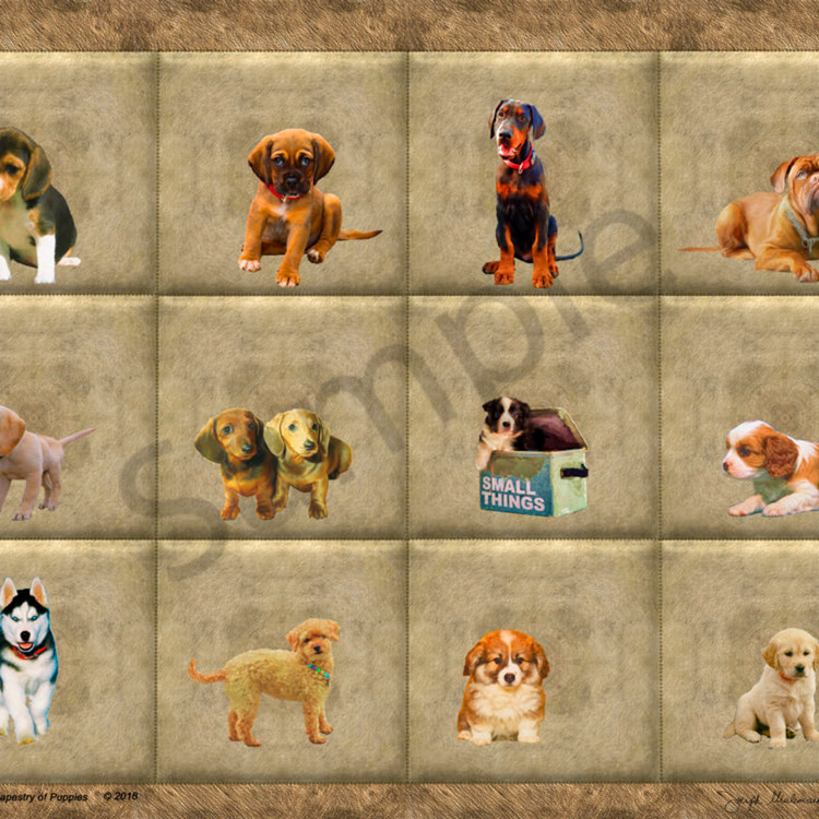 Merged puppies ifursf