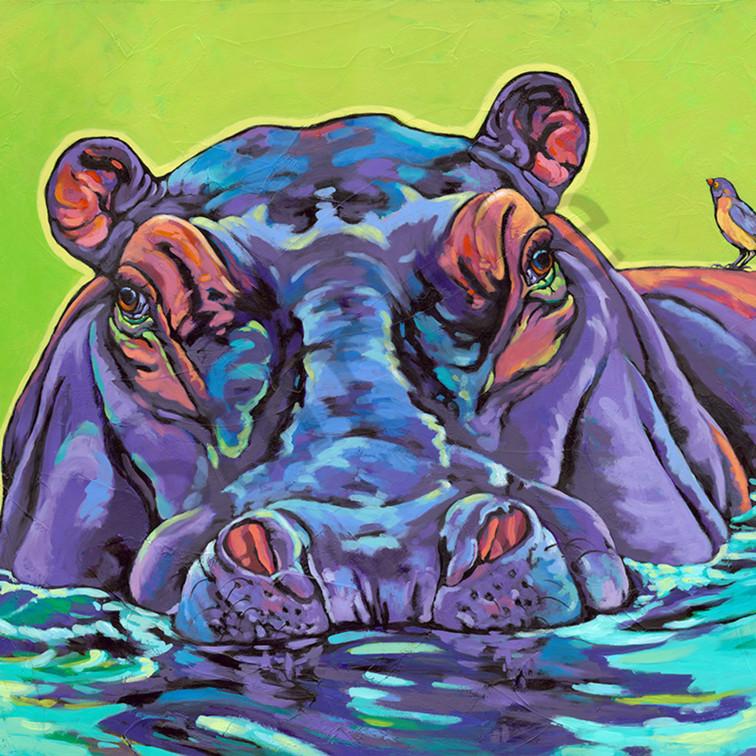 Hippo sm axa59v