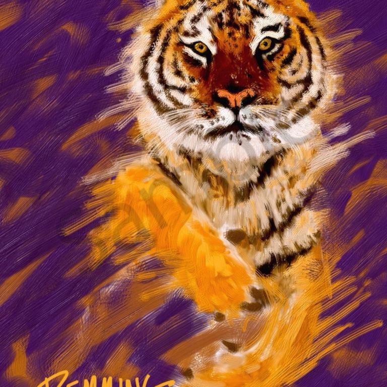 Tiger approach rcop0i