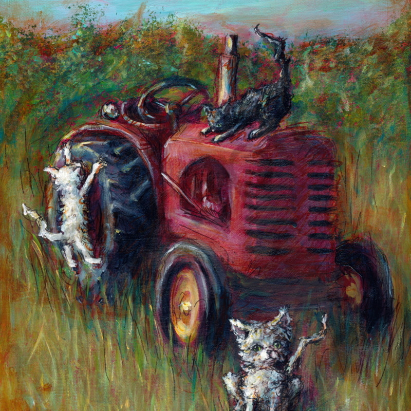 Farm cats ulq0mq