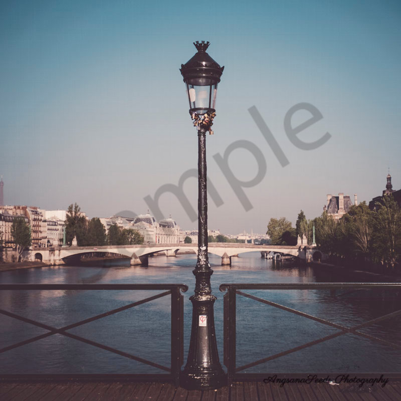 Lamp post on the seine with signature lsw0sd