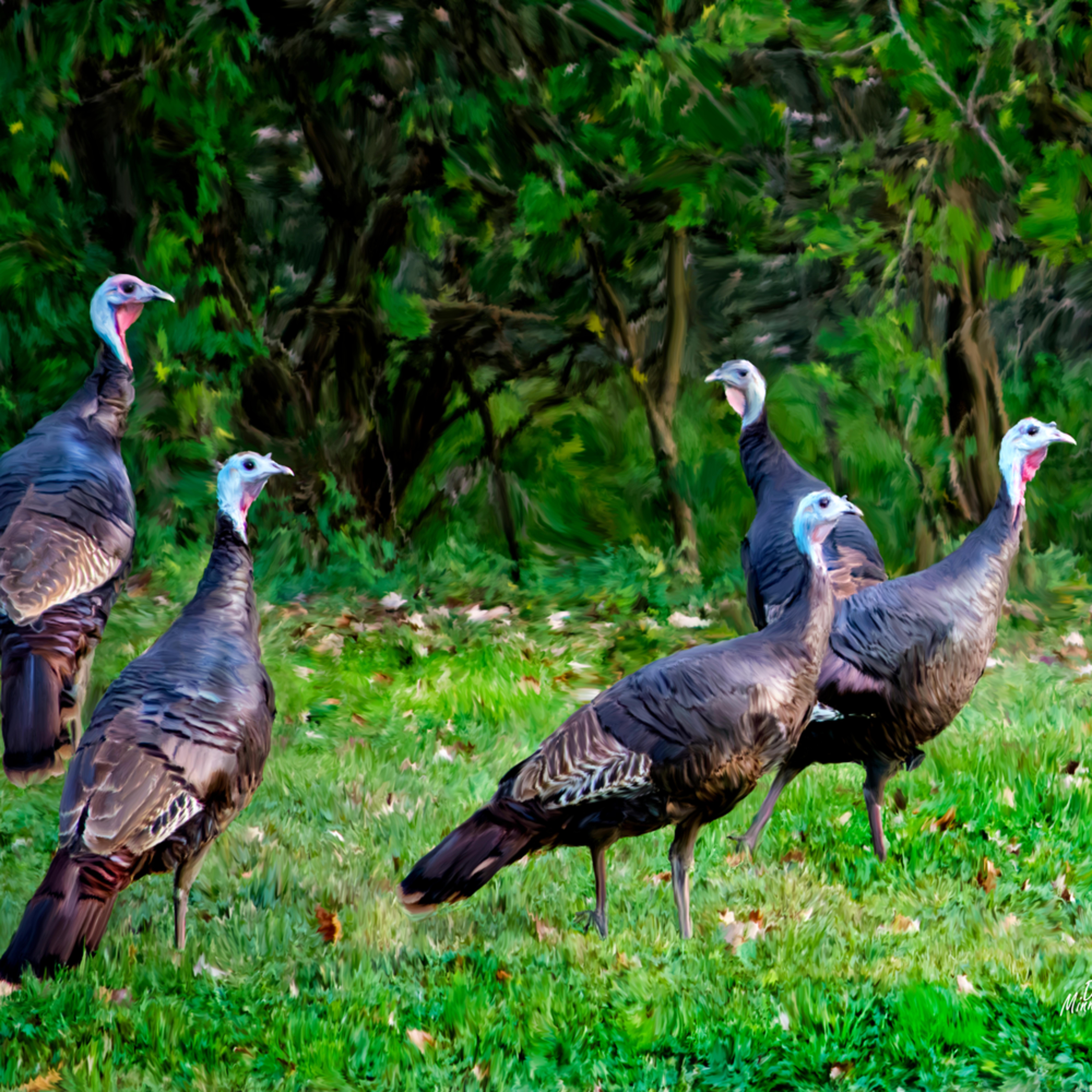 Lady turkeys oreojs