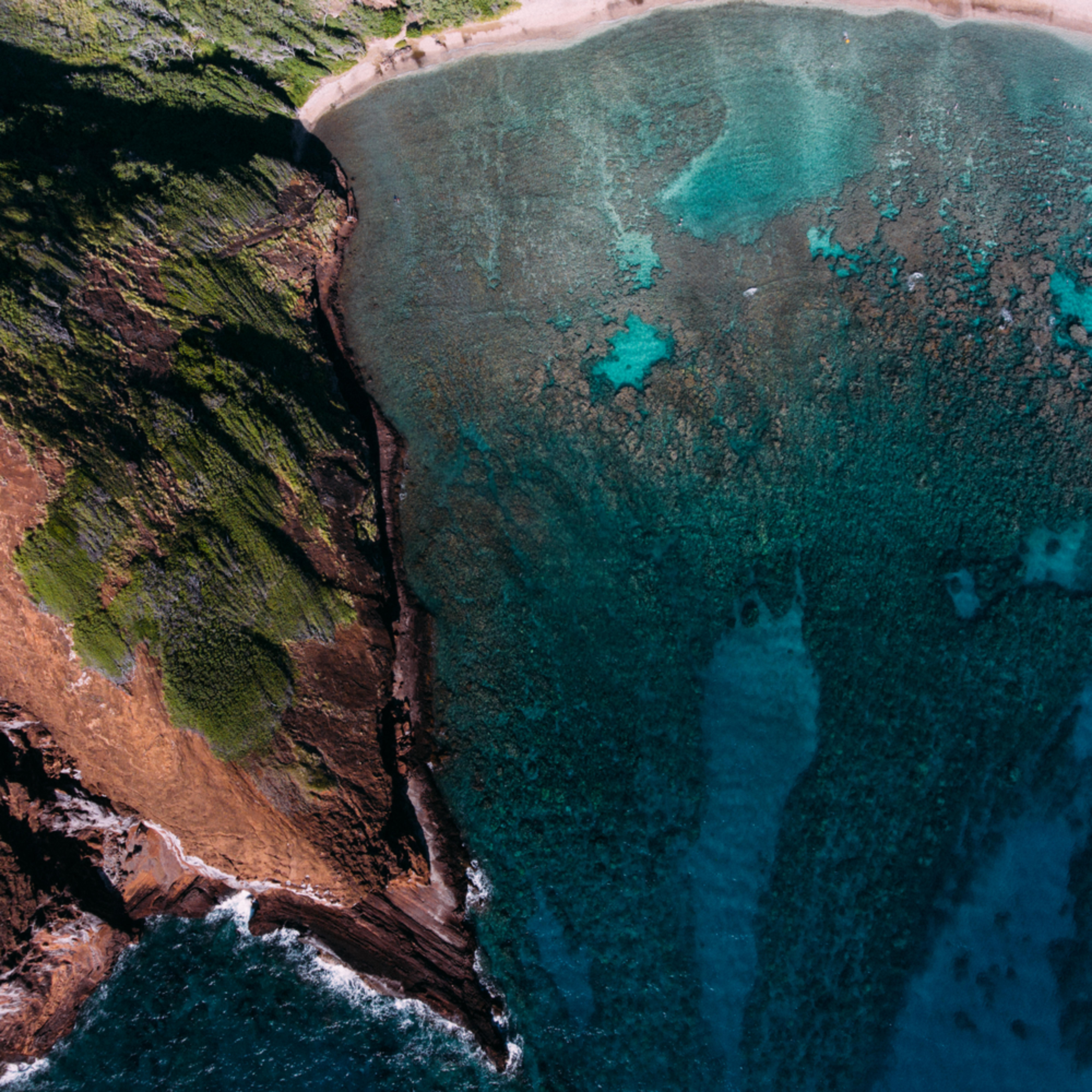 Hawaii  1 vrylci