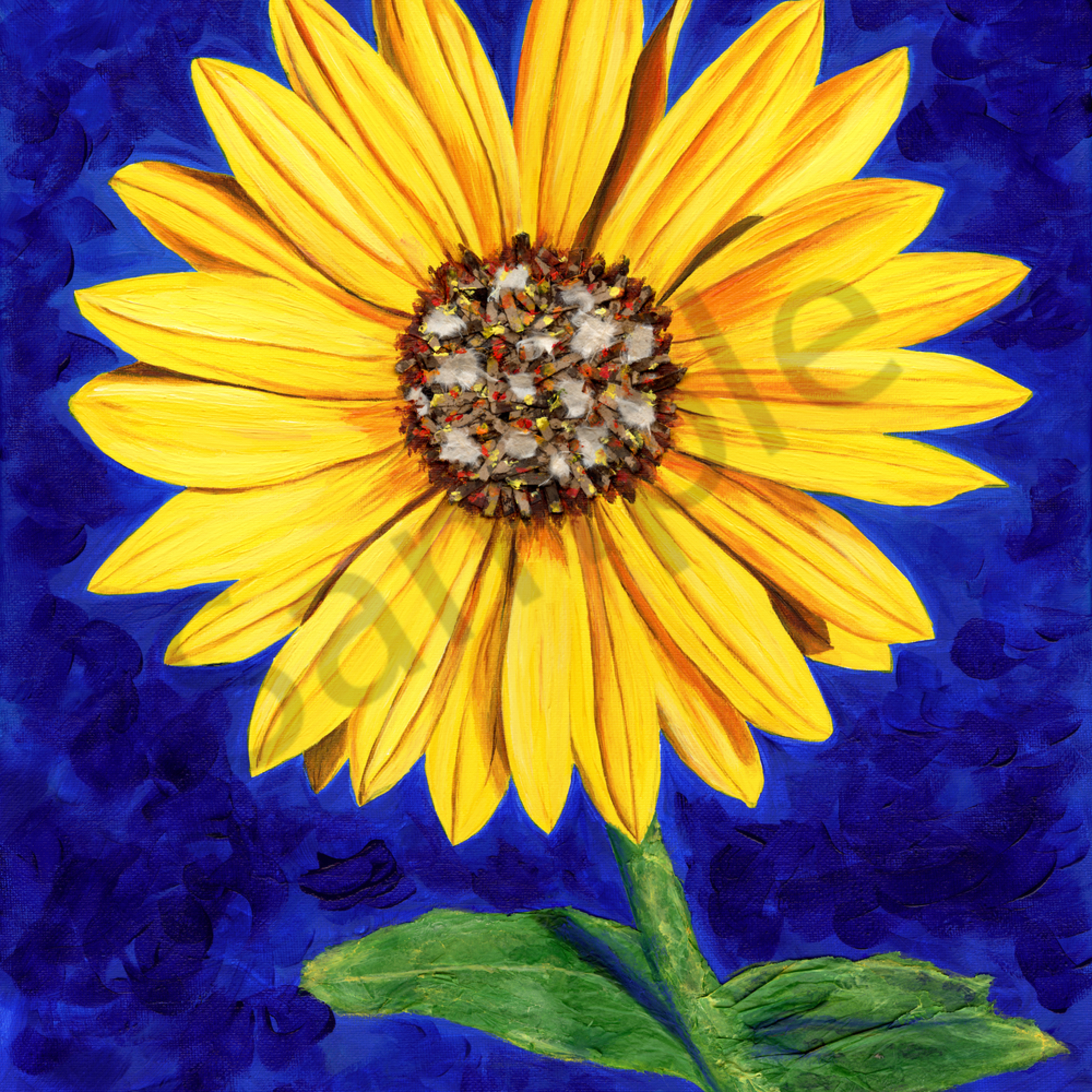 Sassy sunflower 600 eqxils