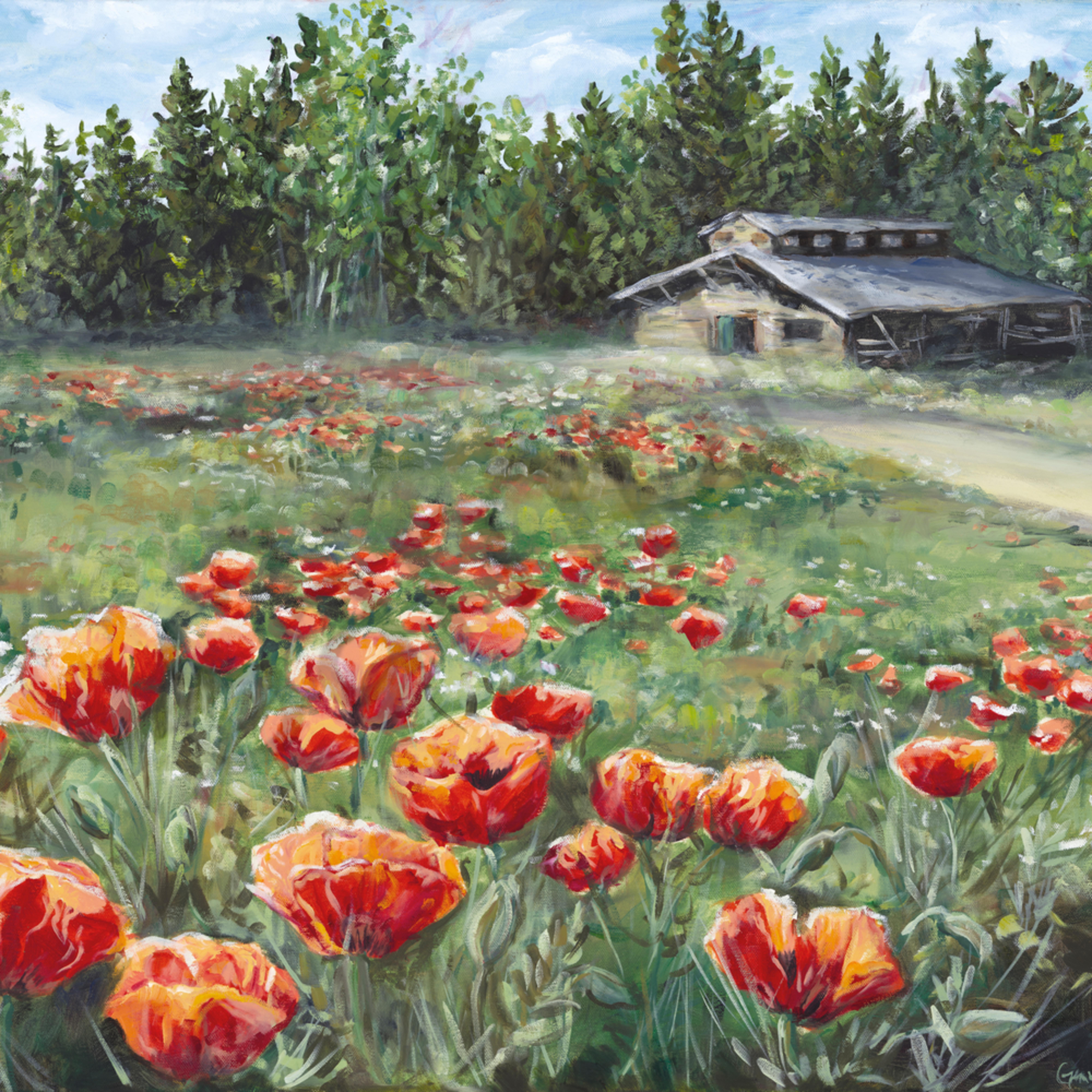 Poppy field color adjustment print smaller 200 pixels1 e1tmqu