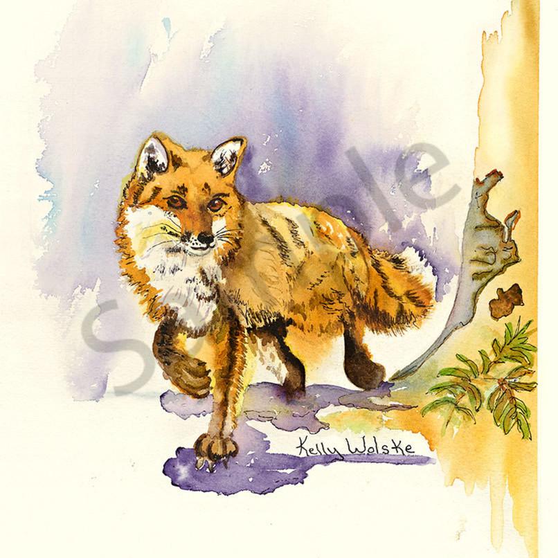 Fox vu3m9j