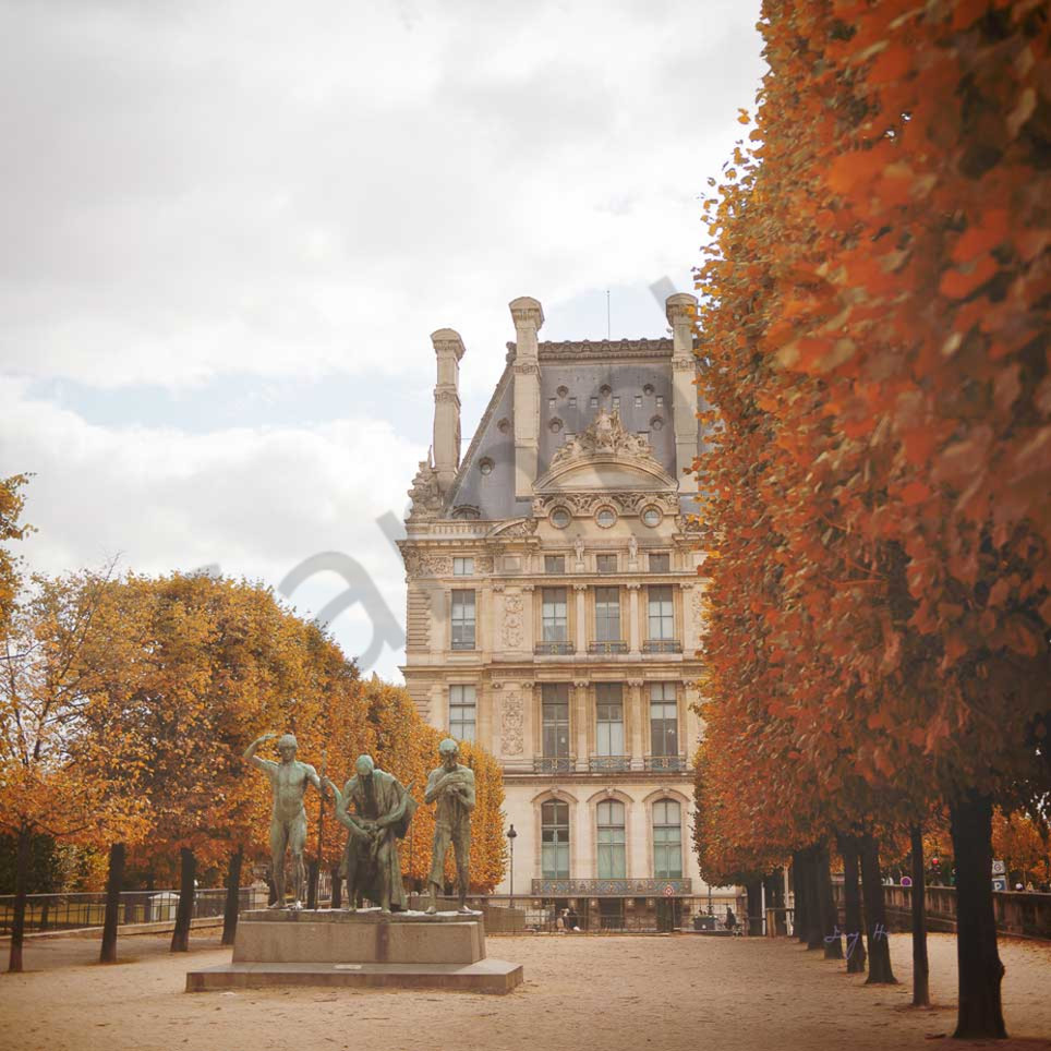 Tuilleries garden in fall with signature zbkjcy