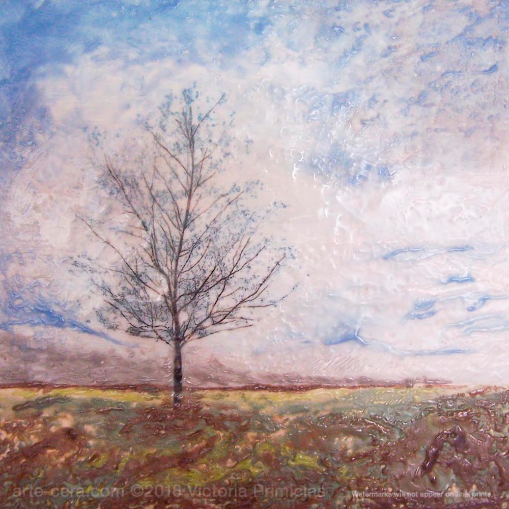 Tree artwork praying maple hdbiza