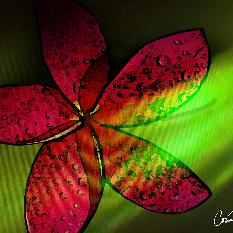 Corinabakke pinkflower greenbackground khihbf