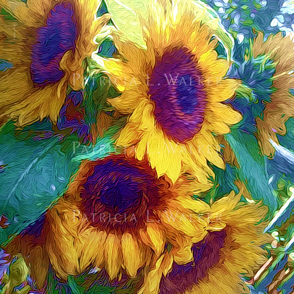 Always a season for sunflowers final llaxg4
