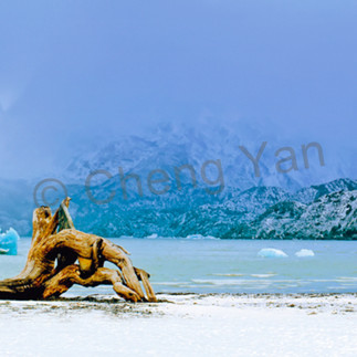 Snowscapes and polar regions 001 t0uzdg