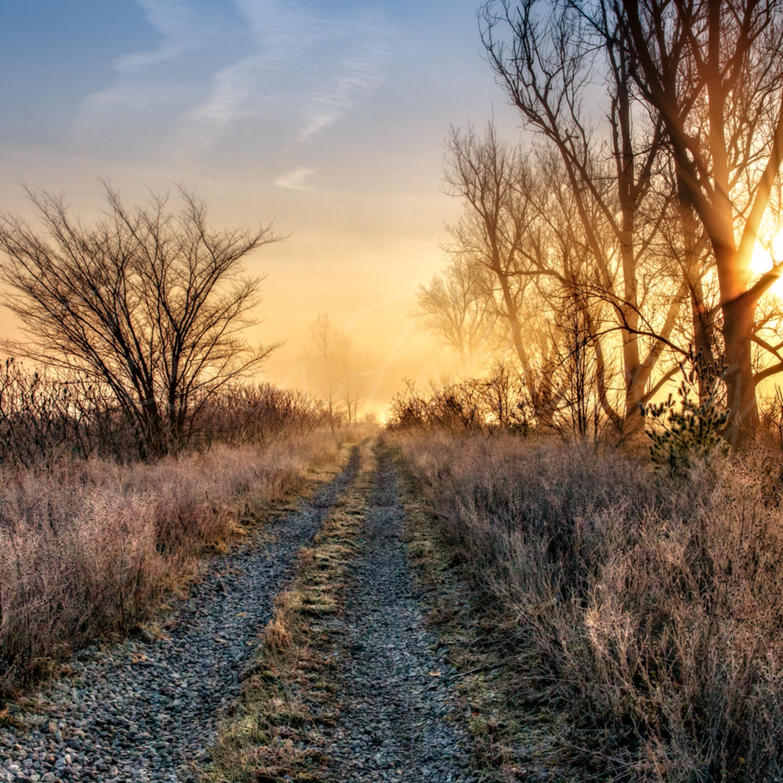 Rural bliss bgetf1