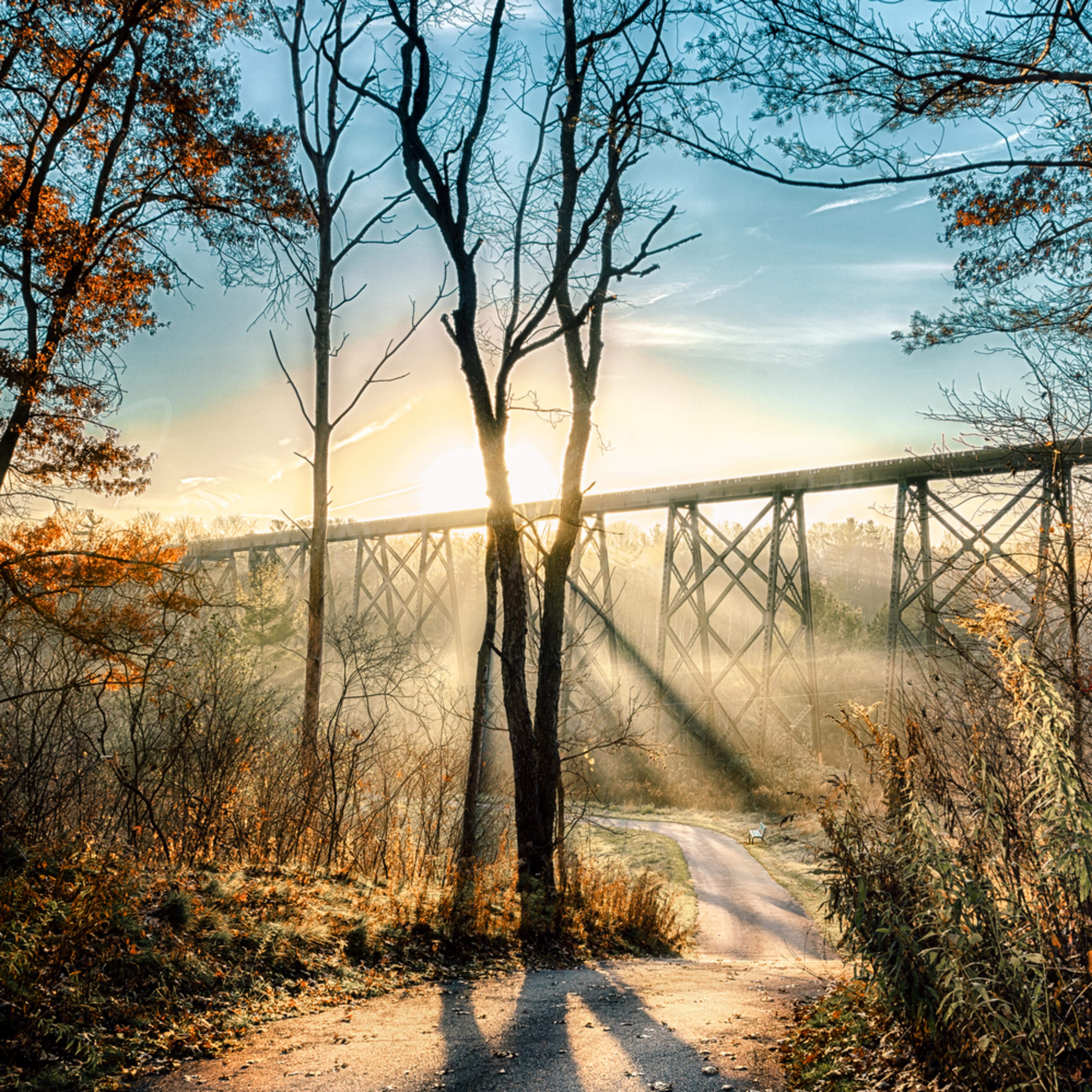 Paths of life nd9pak