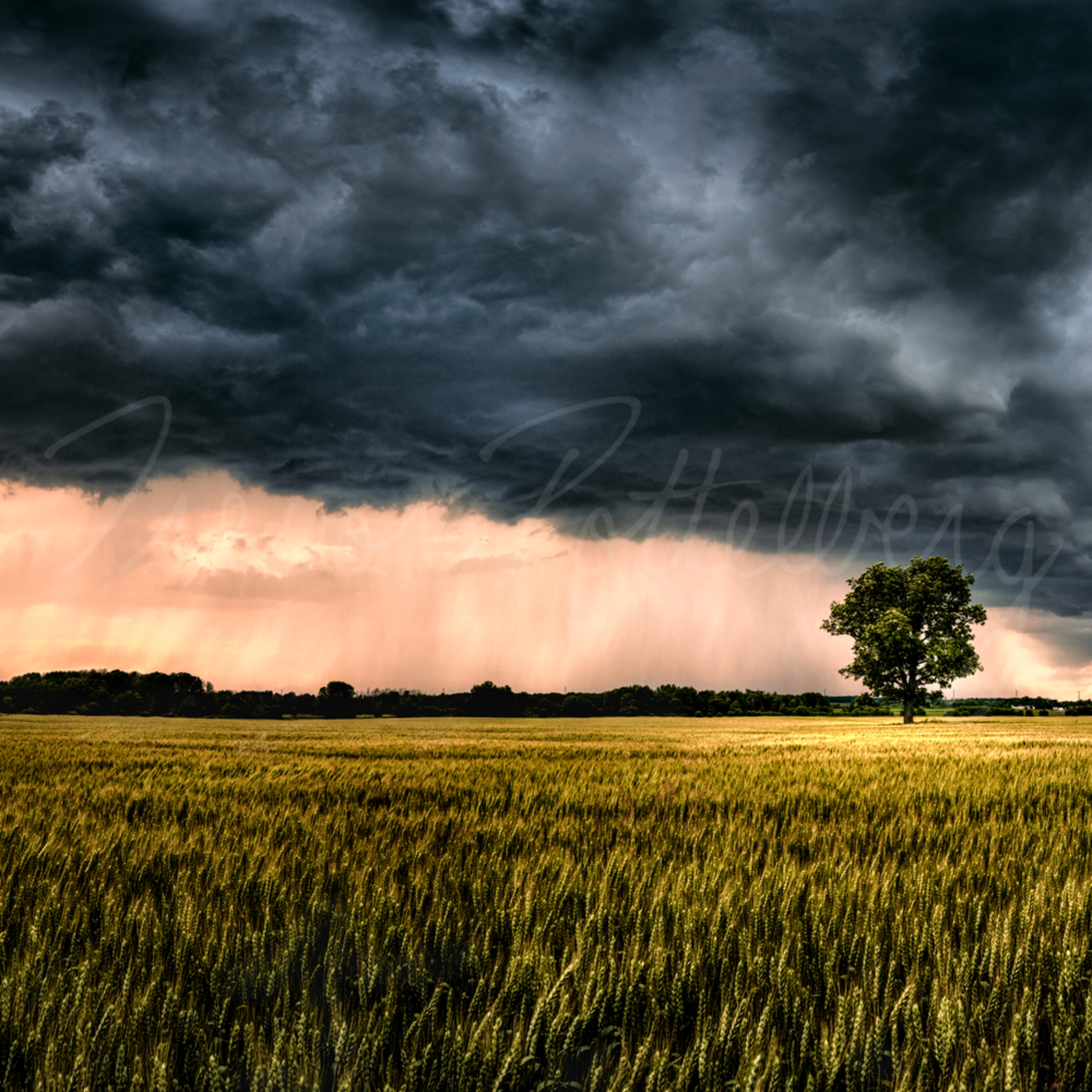 Ominous in nature ihjxtj