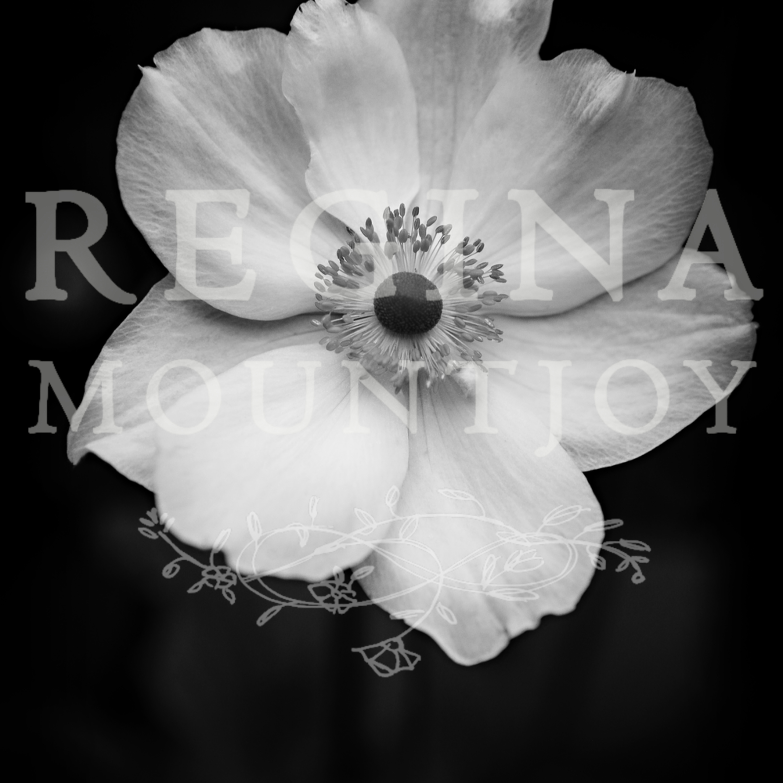 St teresa anemone fcpcuv