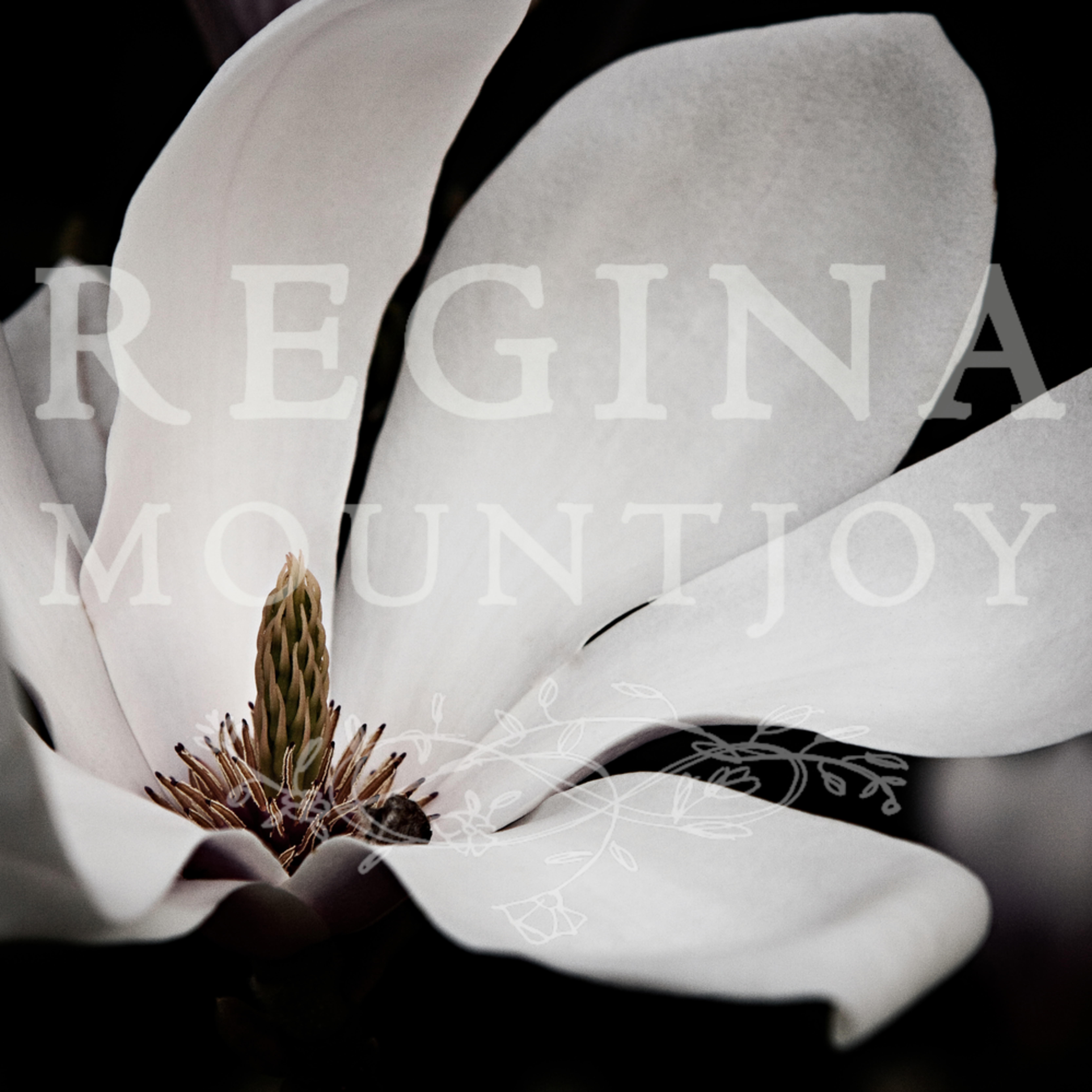 Queen of peace magnolia kv6f3i