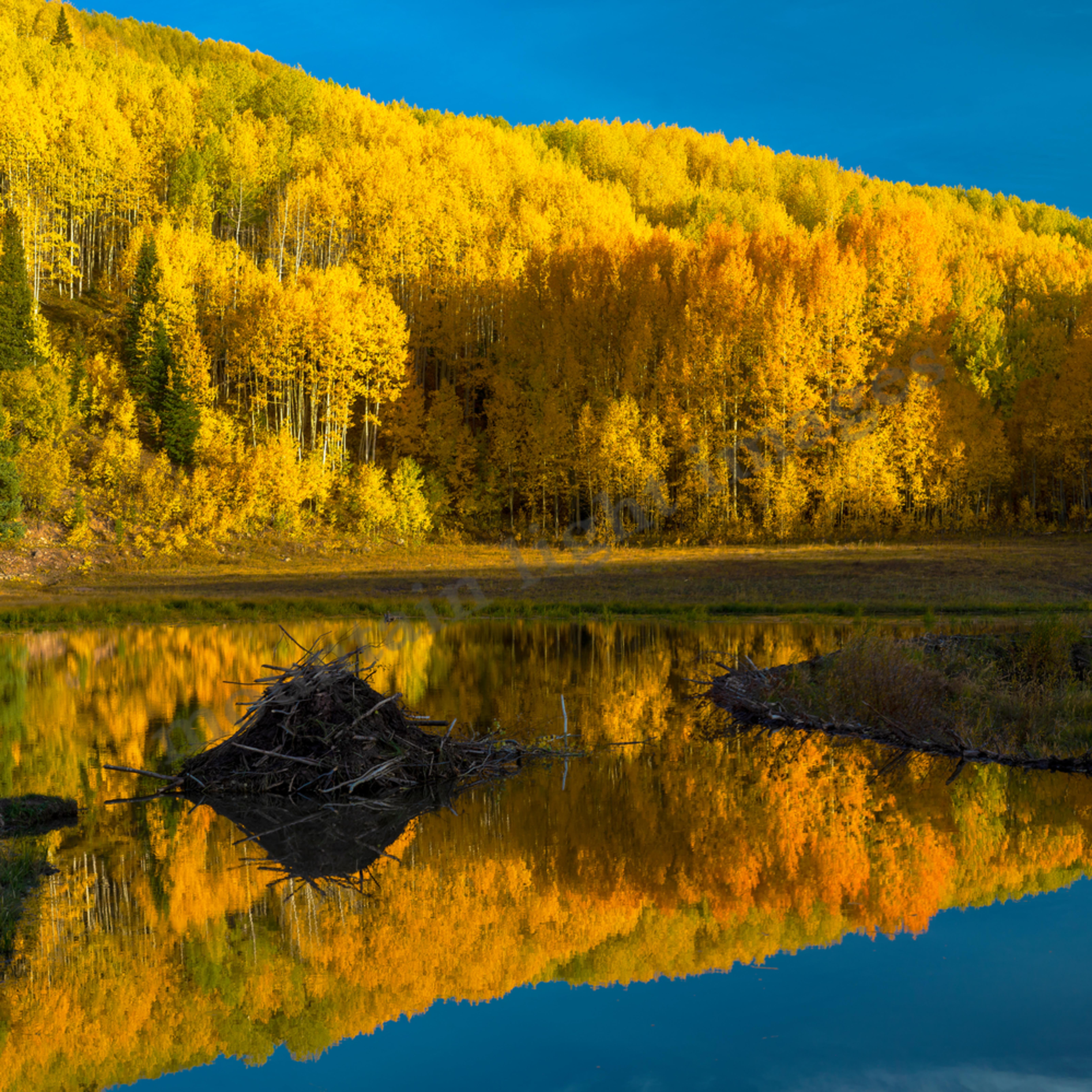 217 beaver pond fall mirror kebler pass 48x27 final ge1ccj