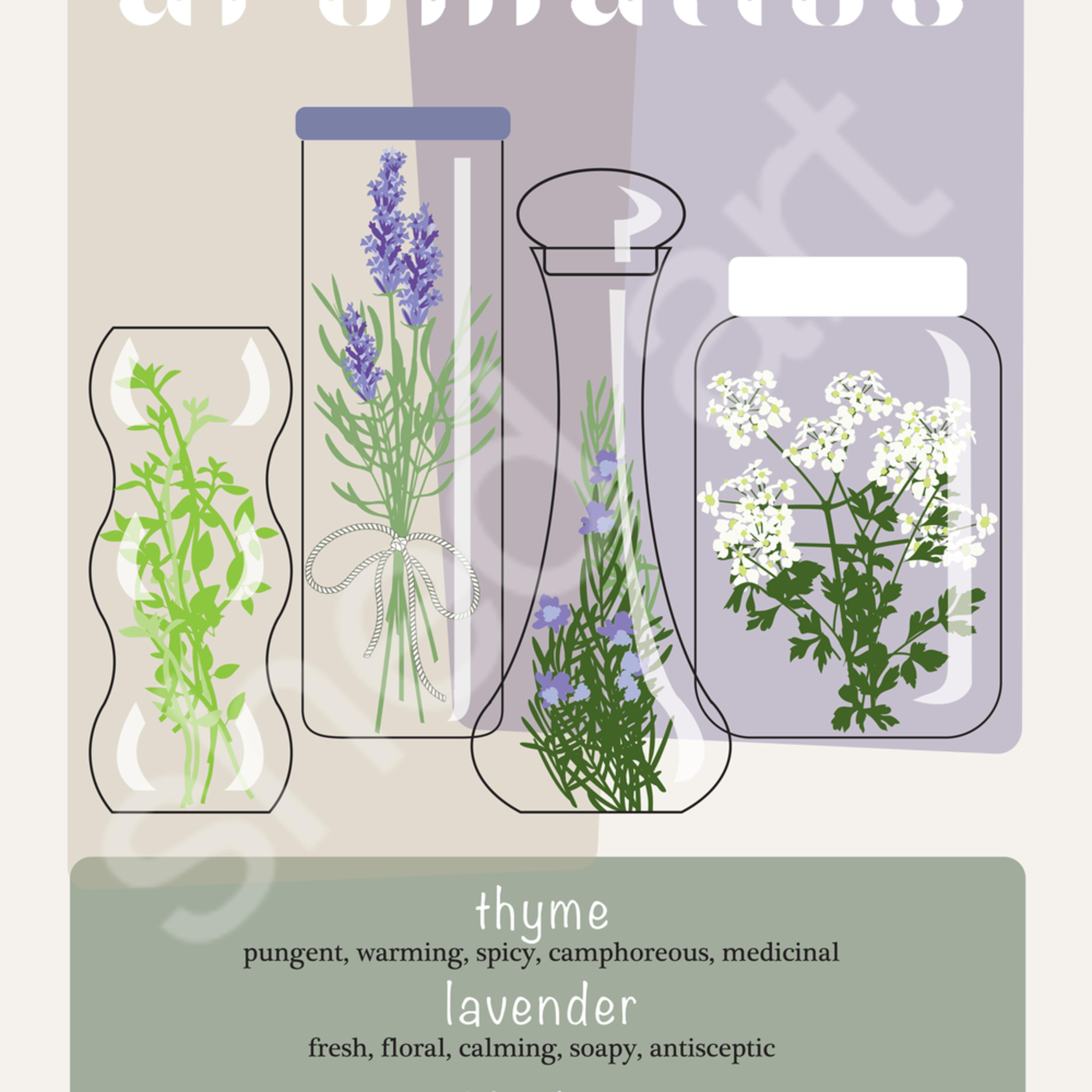 Aromatics le9y83