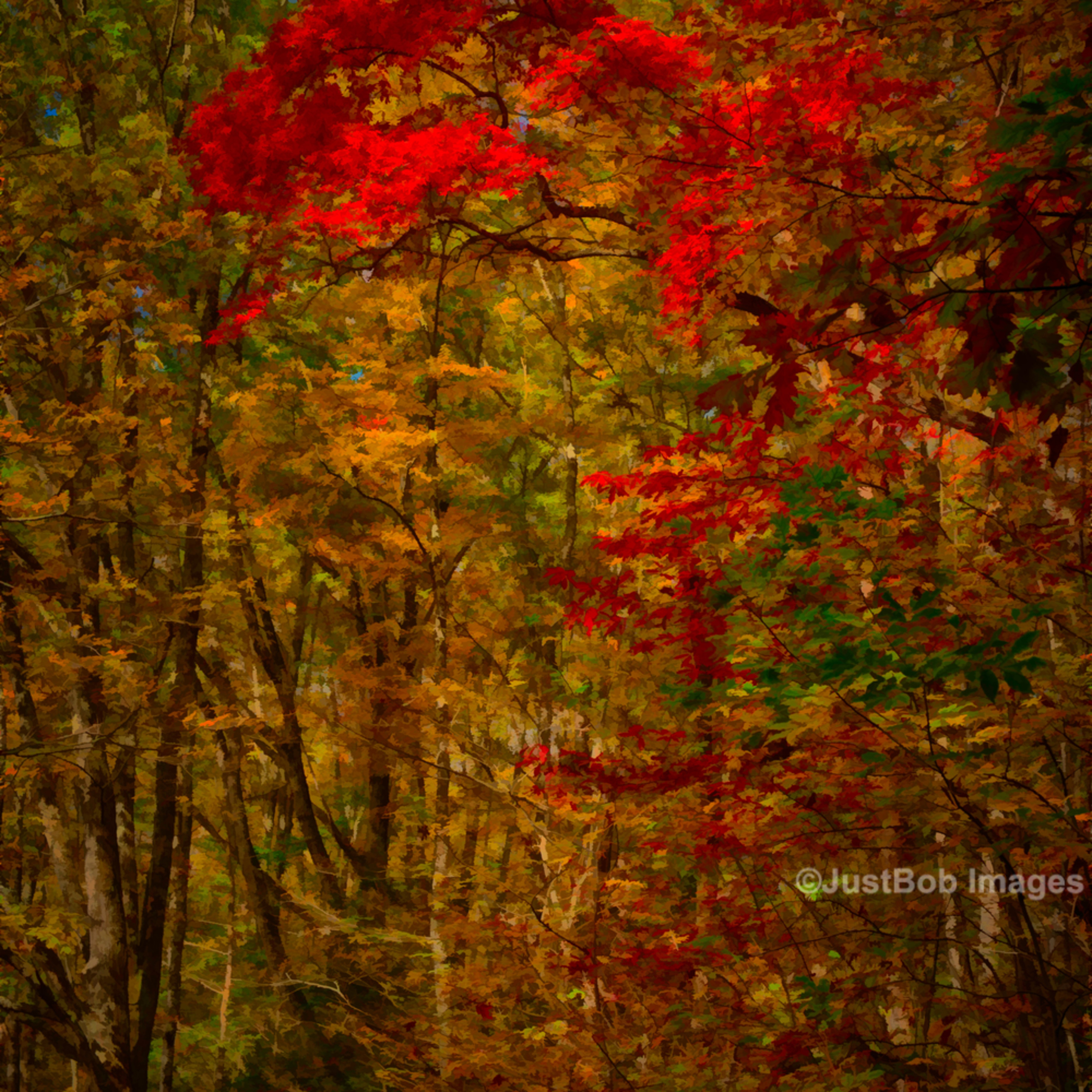 Smokies 20131029 0784 hdr edit rc0ucl