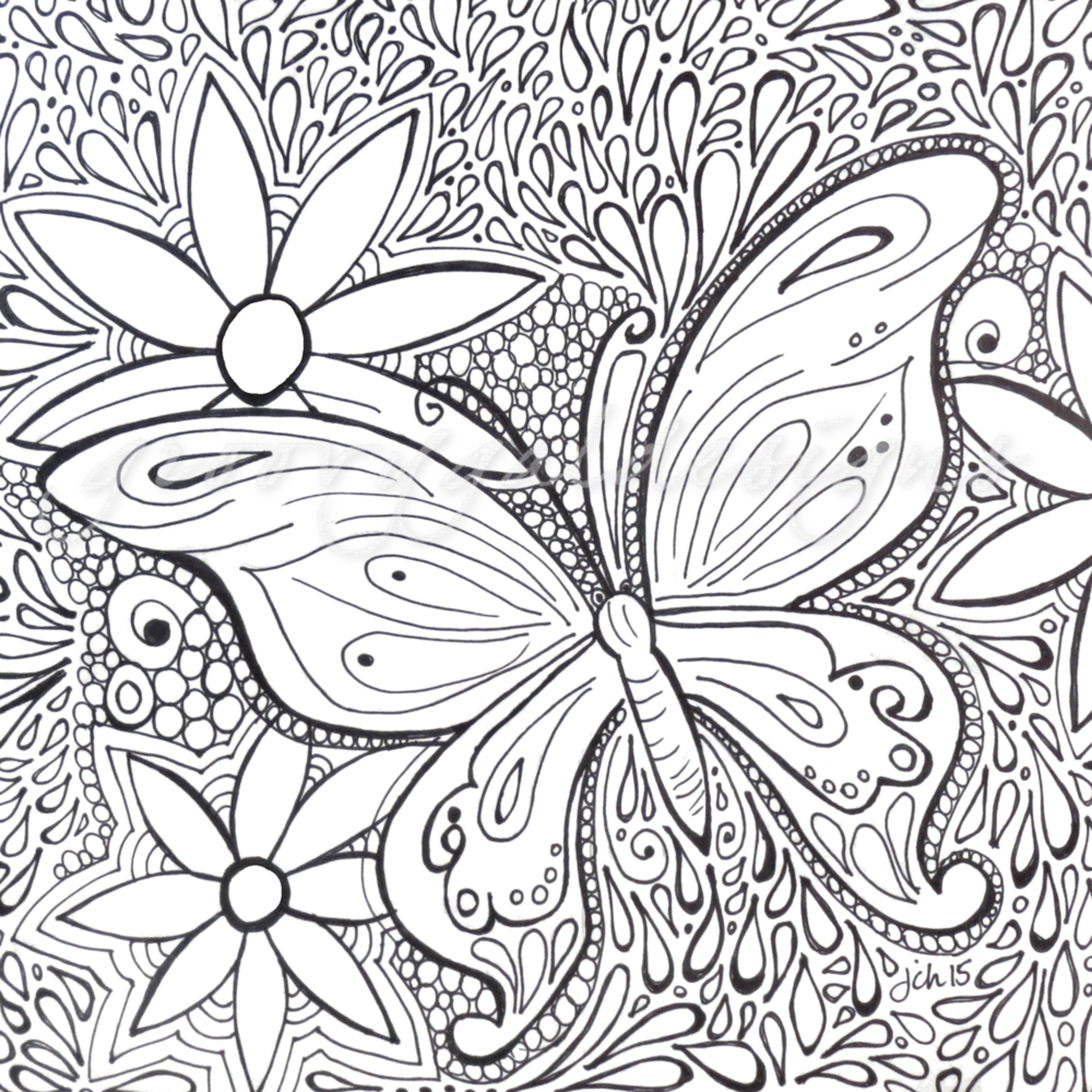 Butterfly color it ik761q