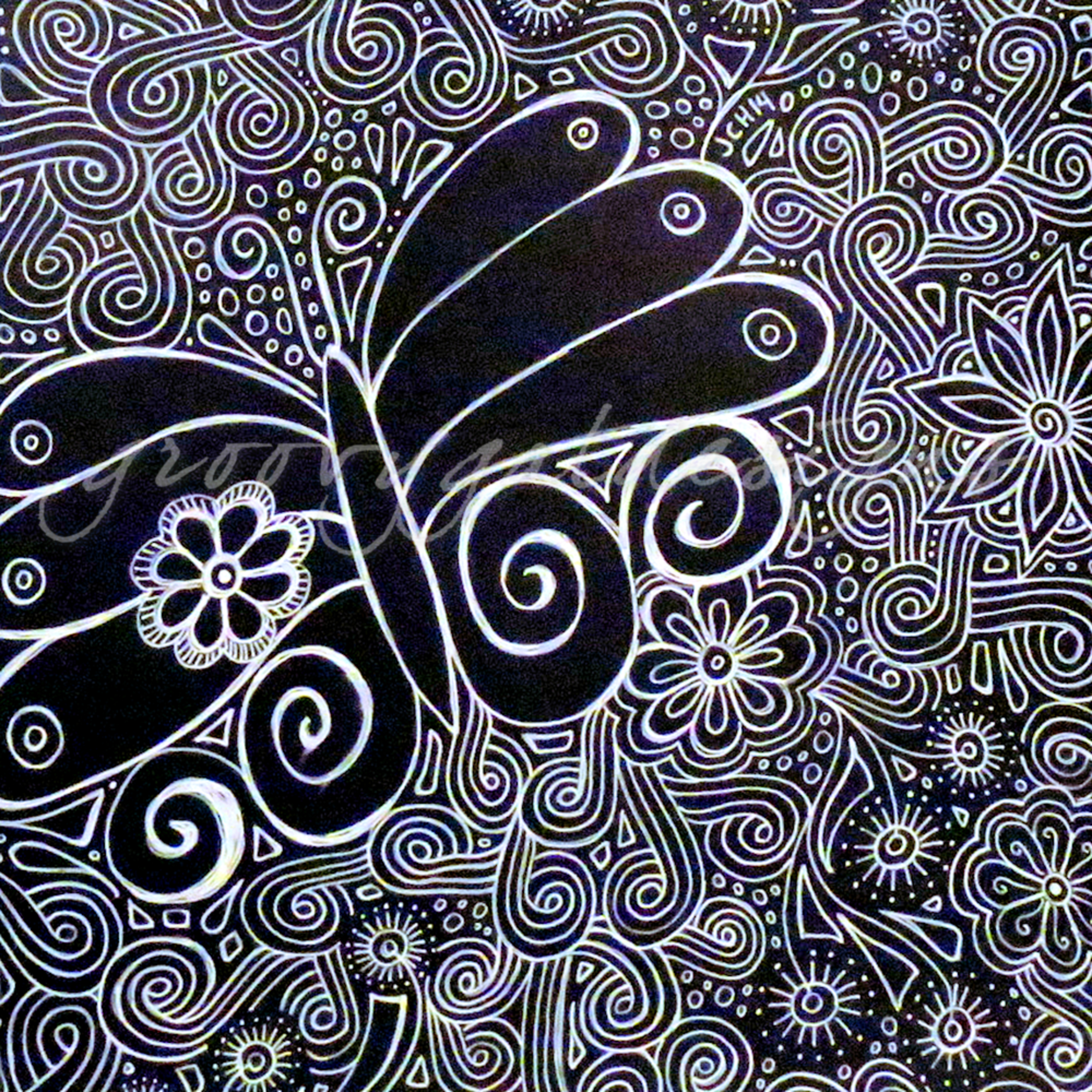 Black and white butterfly g6tjua
