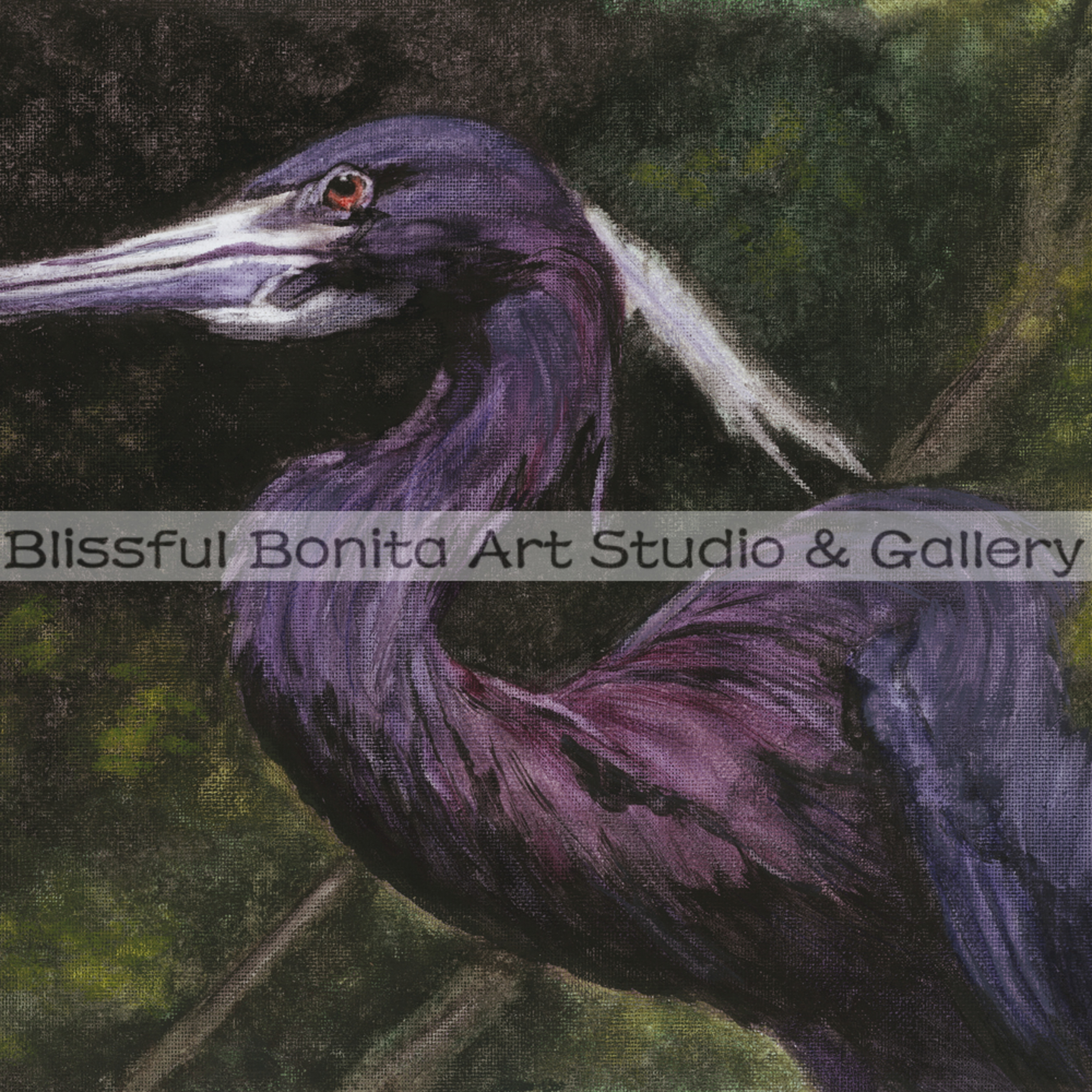 Blue heron emerging eakjrd
