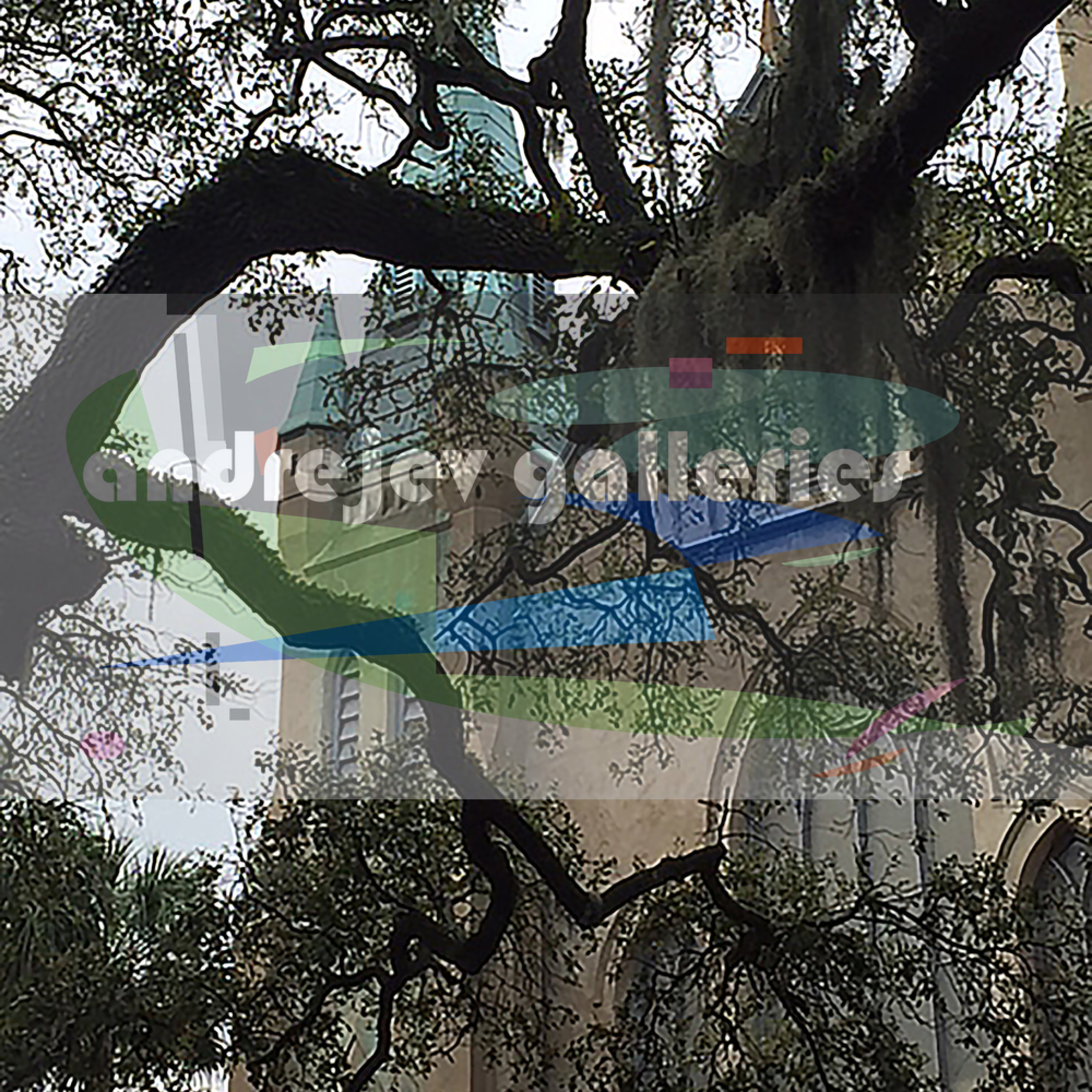 Church w mossy trees 8 by10 300dpi zb5ckb