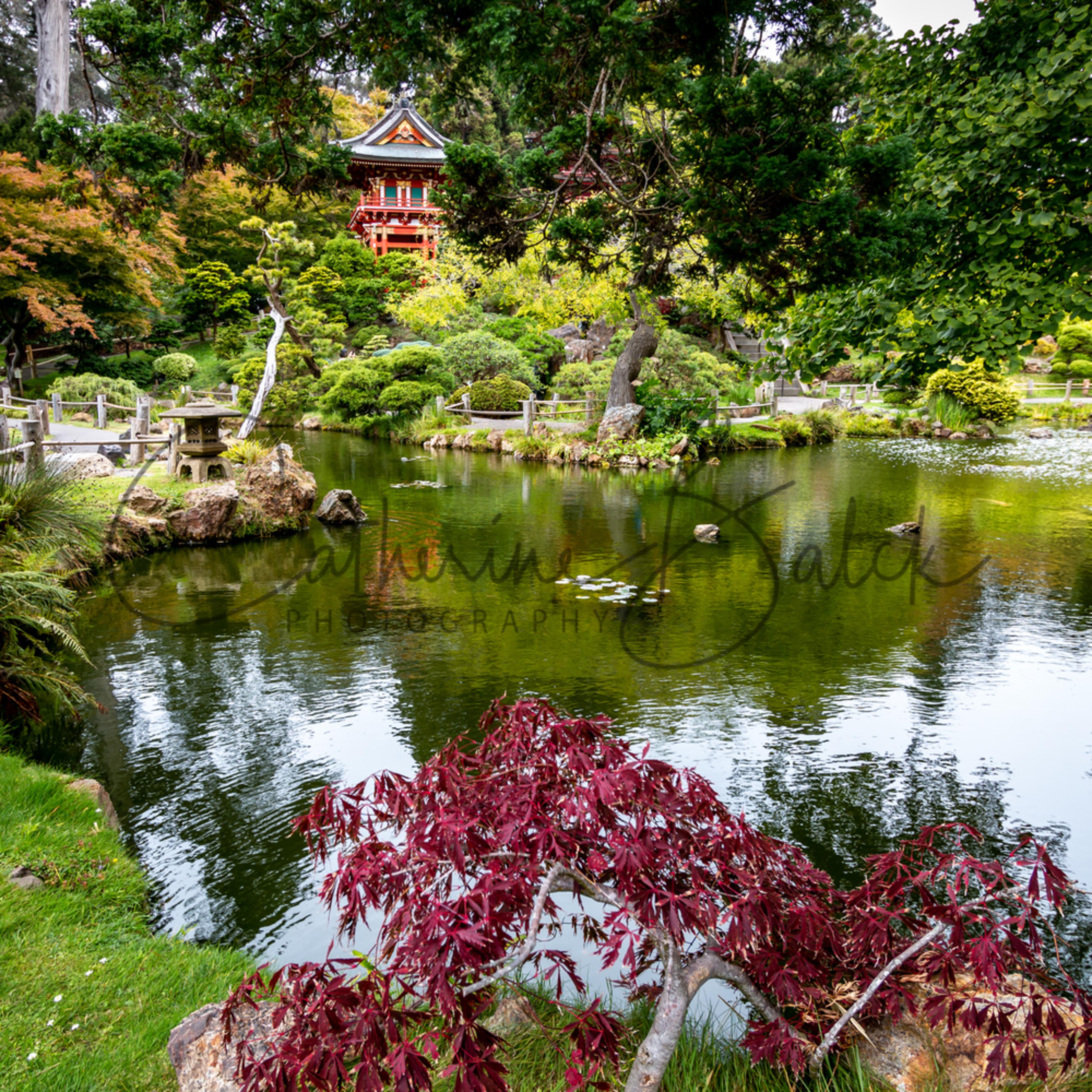 Pagoda pond 11x14 4743 thfrxy