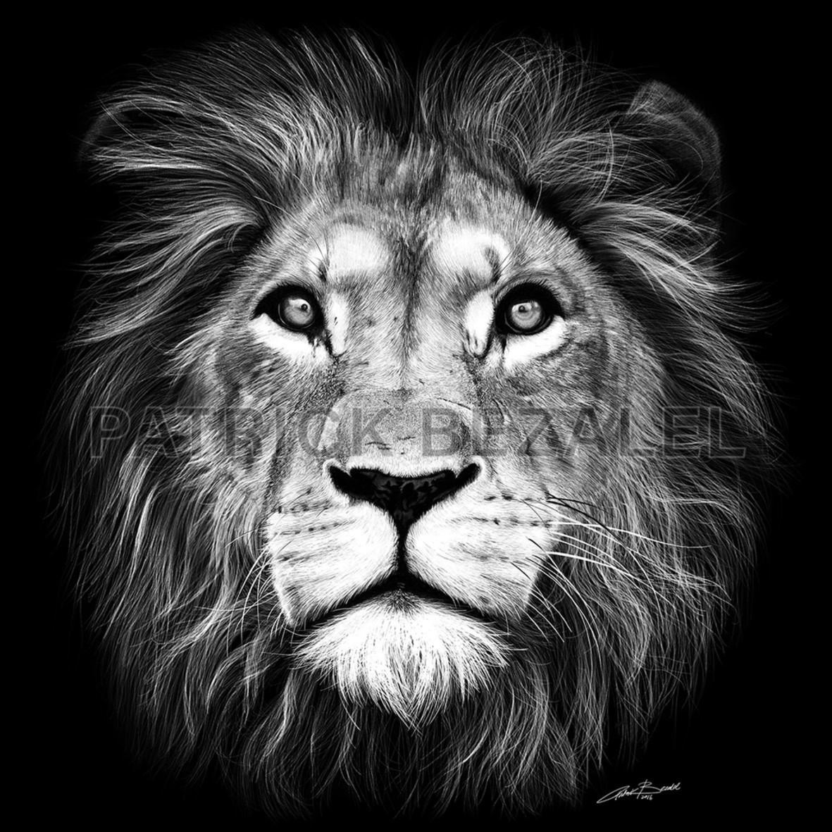 Lion of judah new 0.3x0.3m low c28yr8