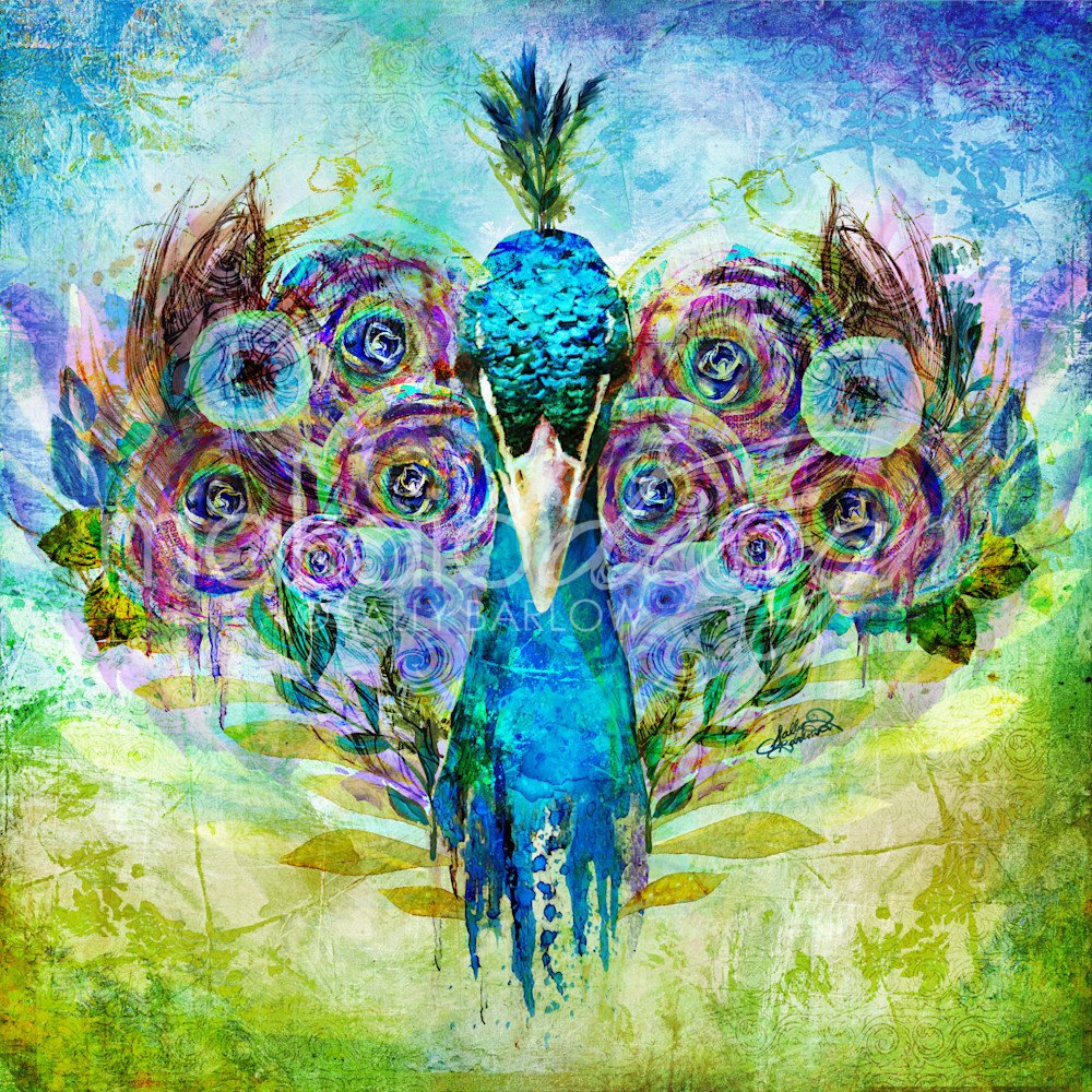 Gardenofthewild peacock saicdg