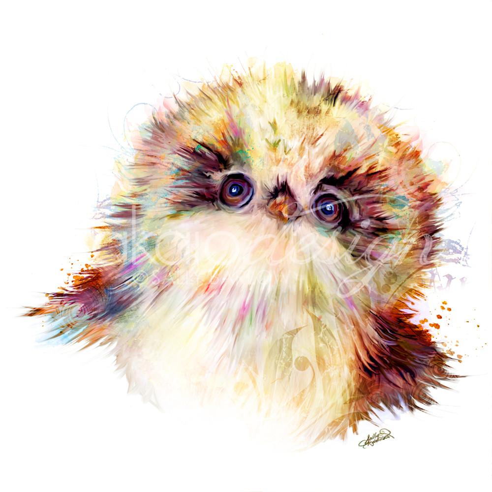 Babyowlet picqyn