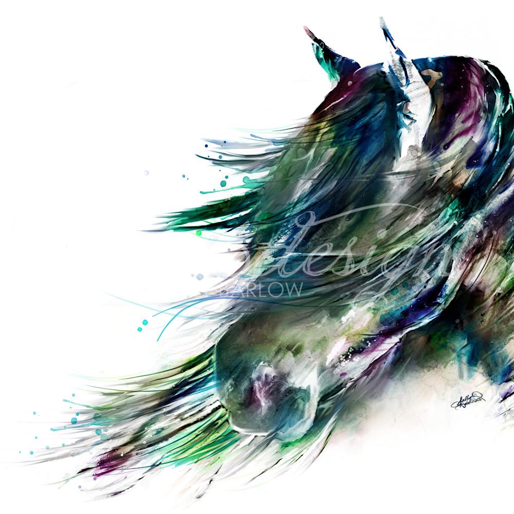 Winddancercolorful qvri3l