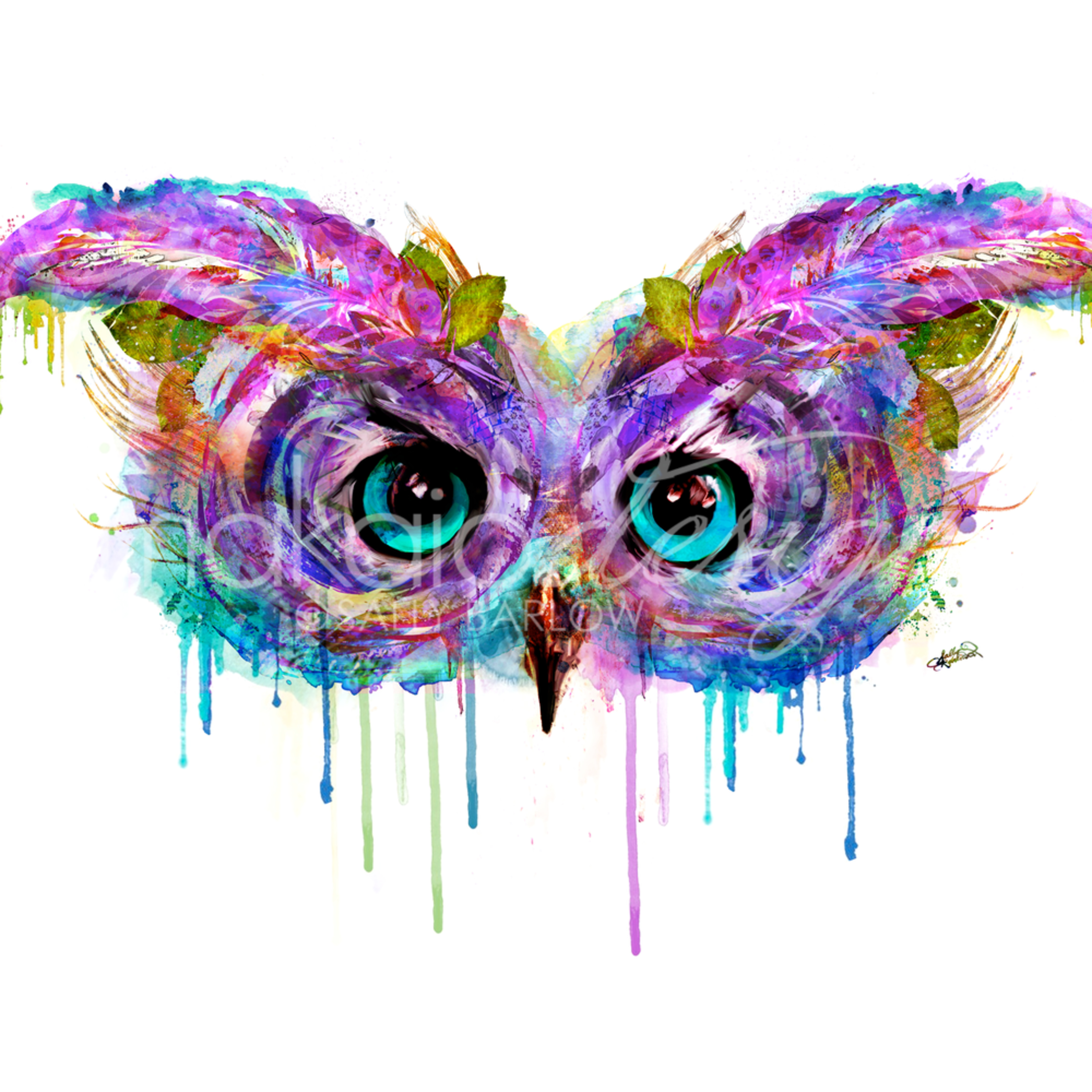 Rainbowowl bbtkfz