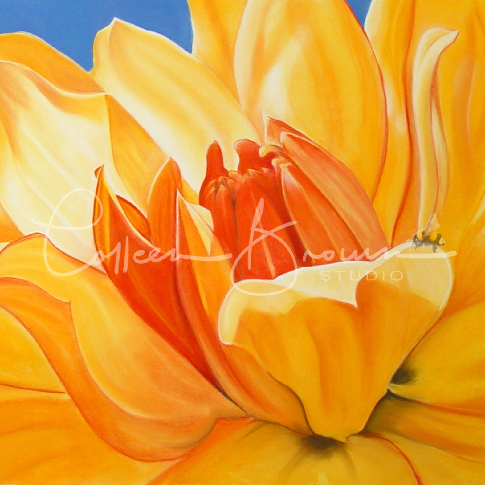 Saffron splendour colleen brown ng7u7t