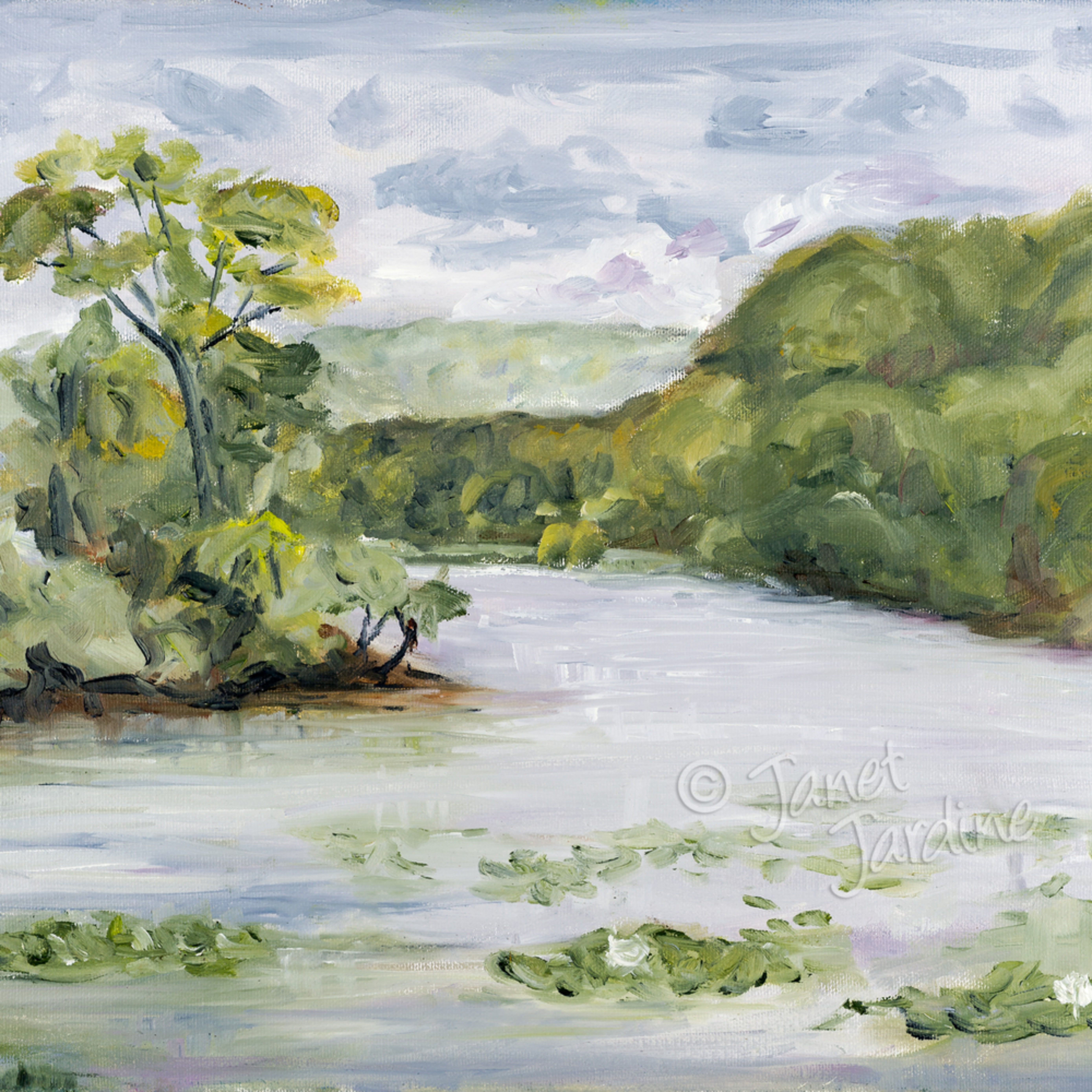 Cootes paradise on a hot humid day janet jardine painting lm554h