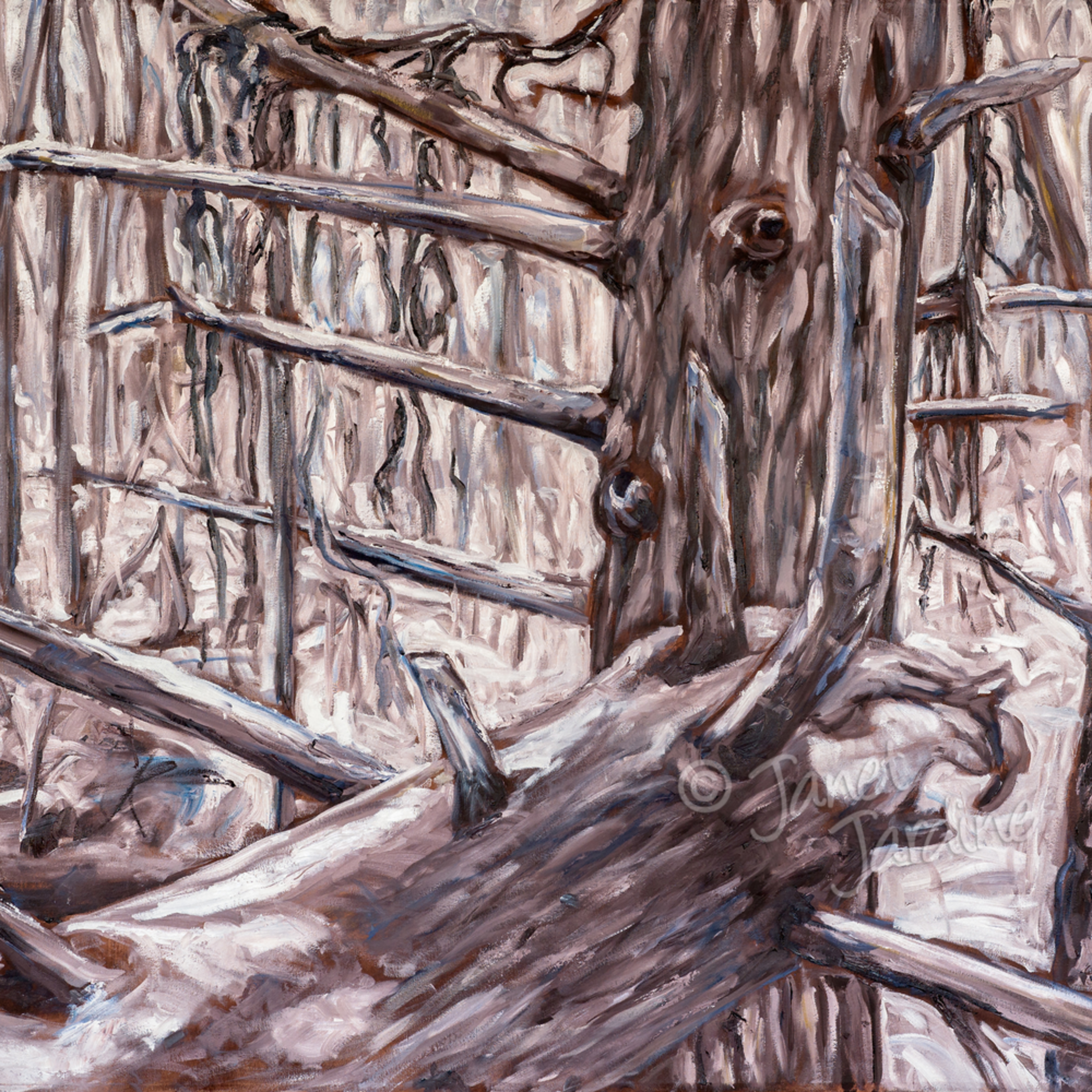 Spirit of the winter forest janet jardine painting shi4ov