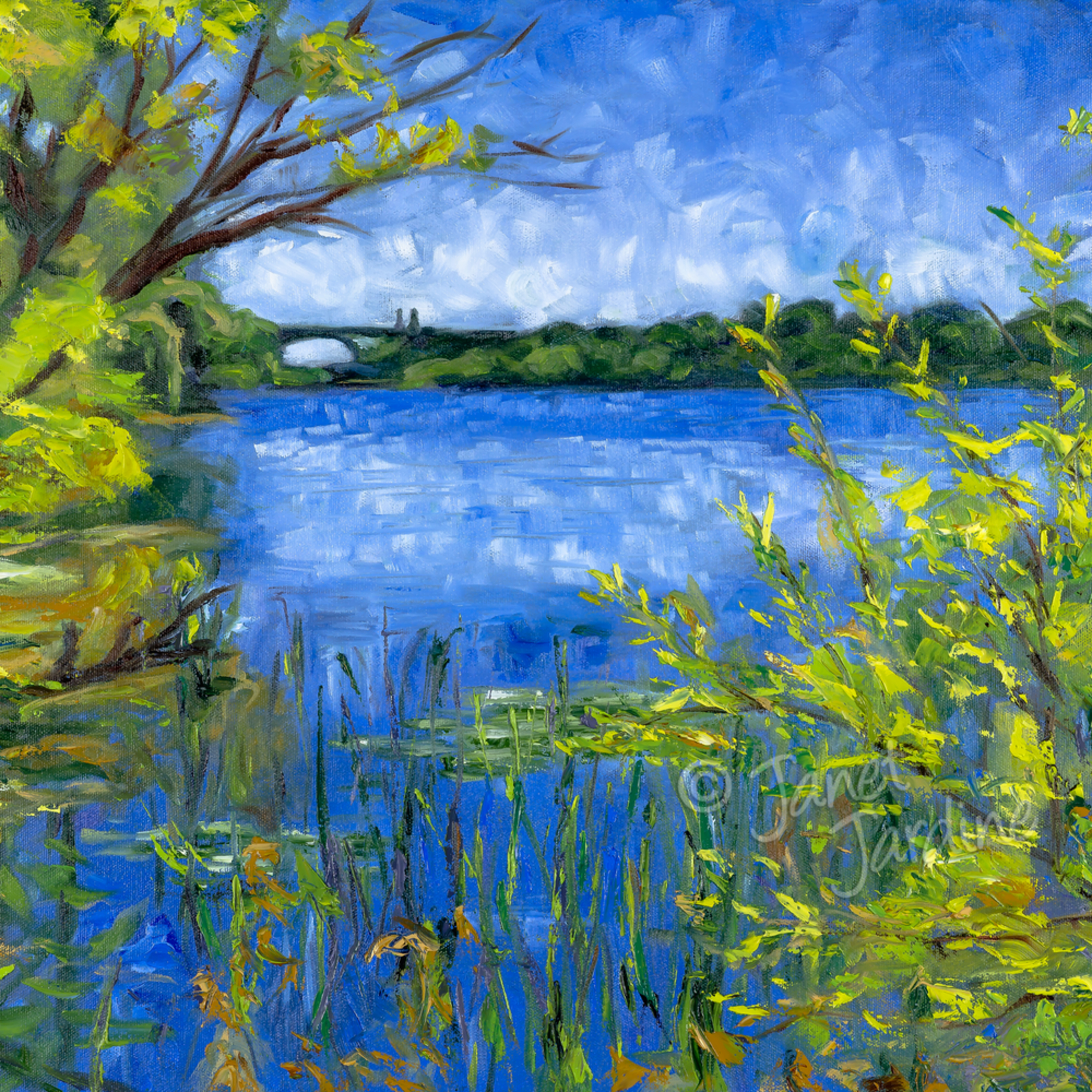 Cootes paradise   view towards the desjardins canal janet jardine painting dti6nz