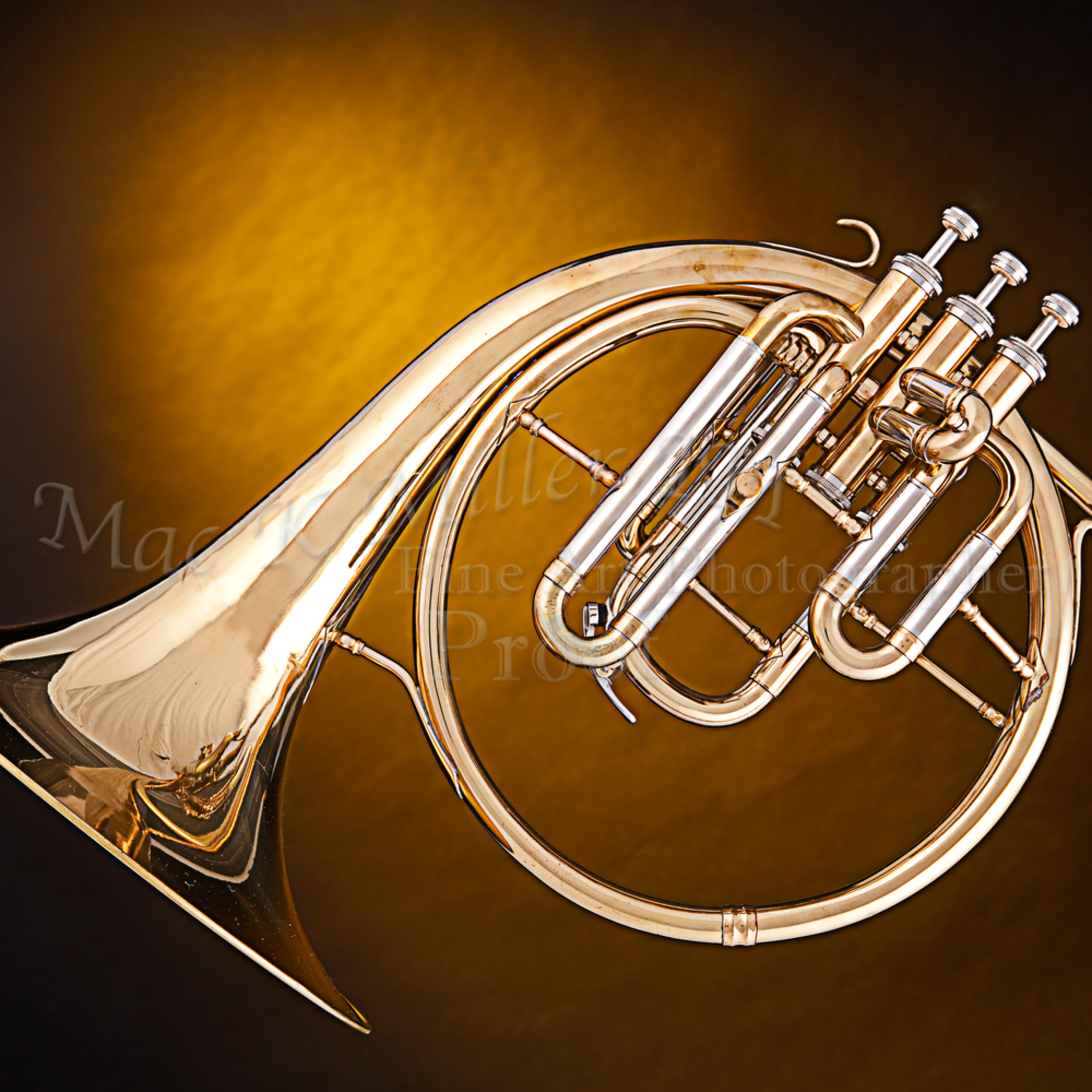 Antique french horn on gold 2079. 02 rpposj