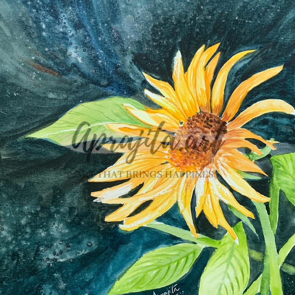 Sunflower print xo2gsn