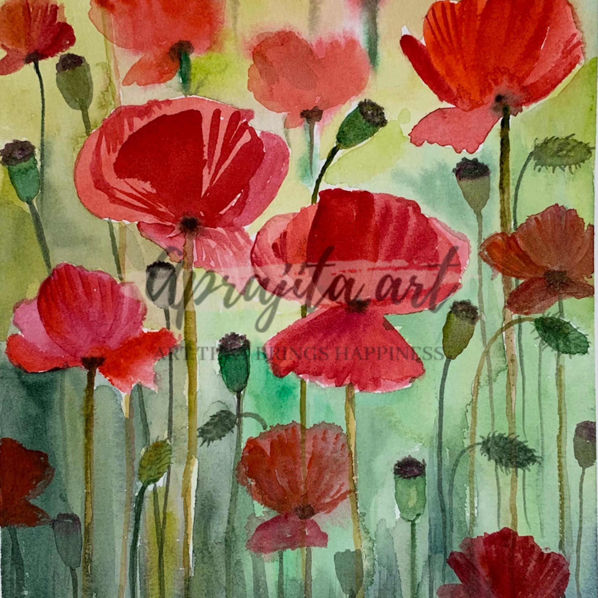 Poppies lasyi0