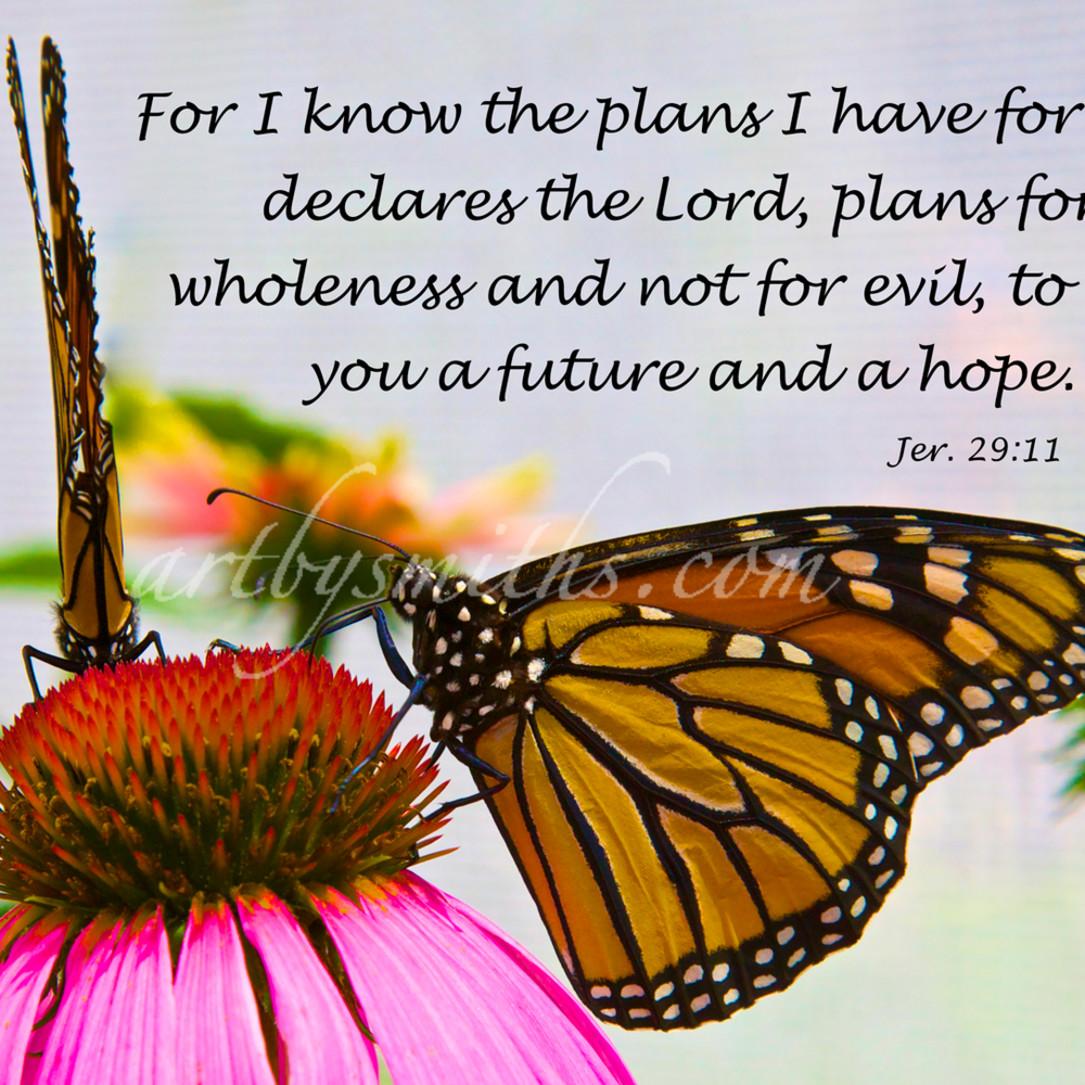 Jeremiah 29 11 prrbev