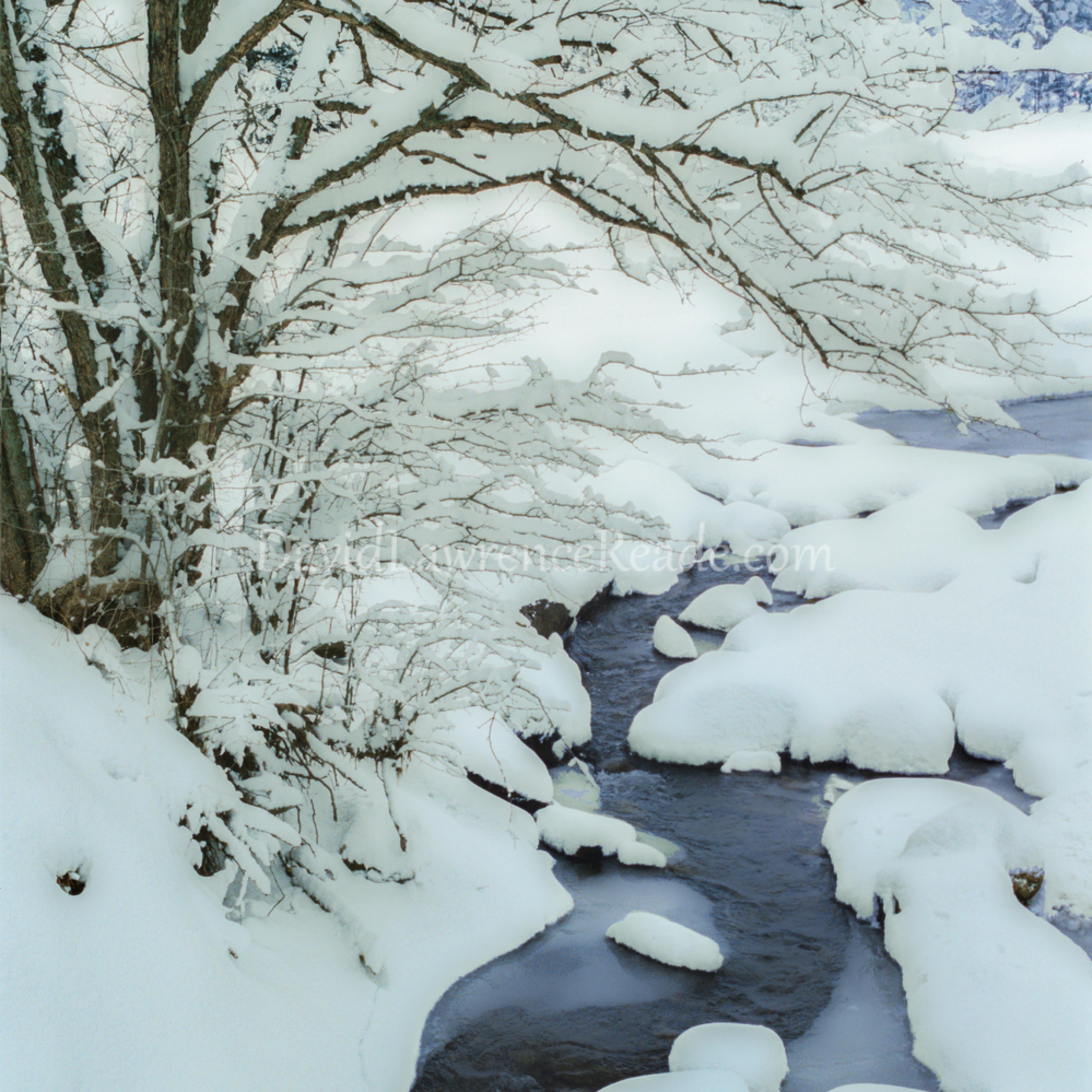 Winter creek fnakdg