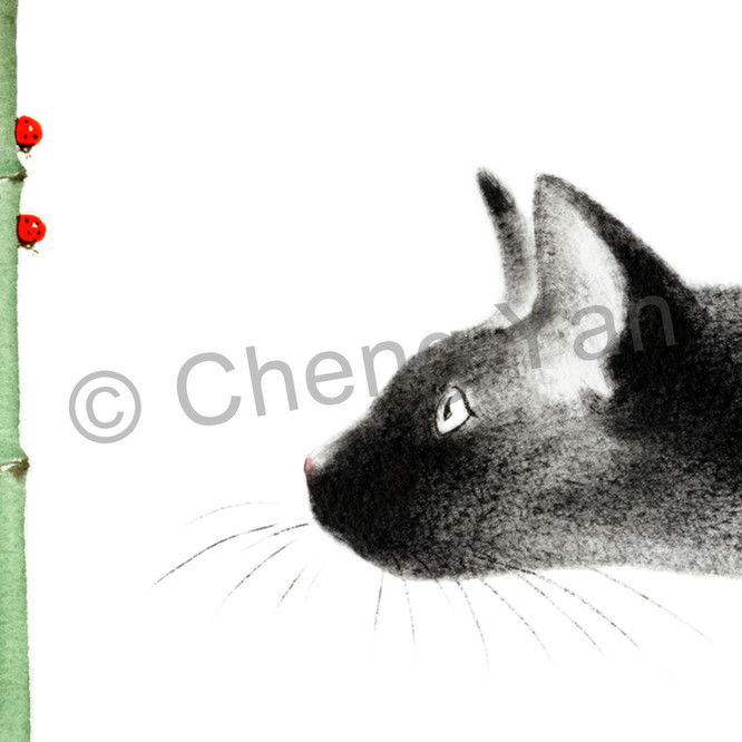 Cats 001 axqpn1
