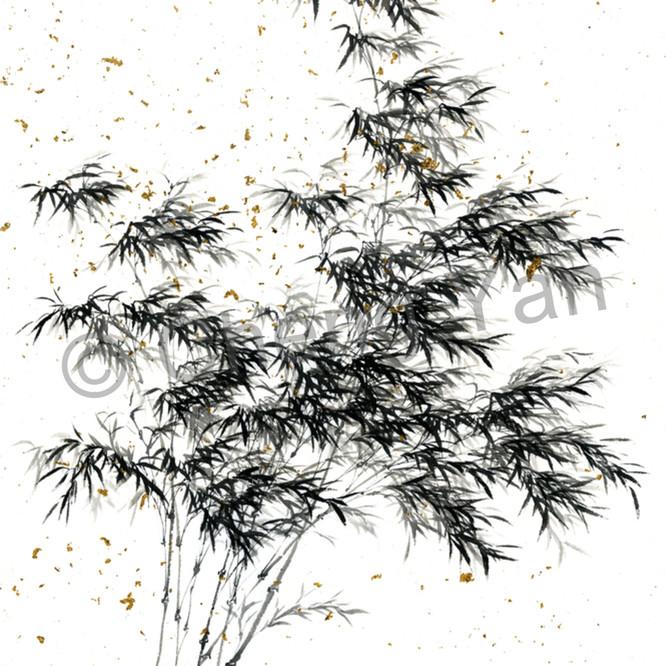 Bamboo 001 vuckpd