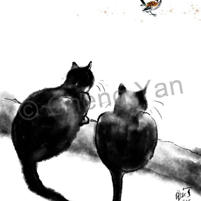 Cats 064 sblgyr