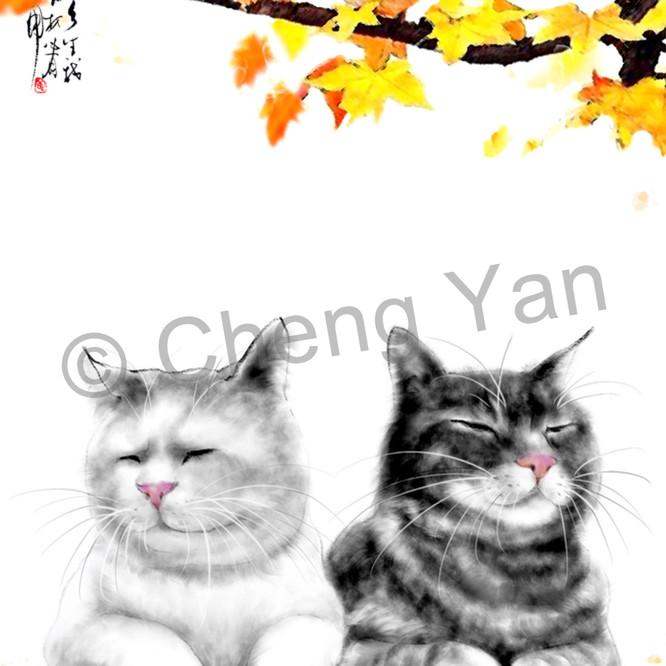 Cats 065 slfirv